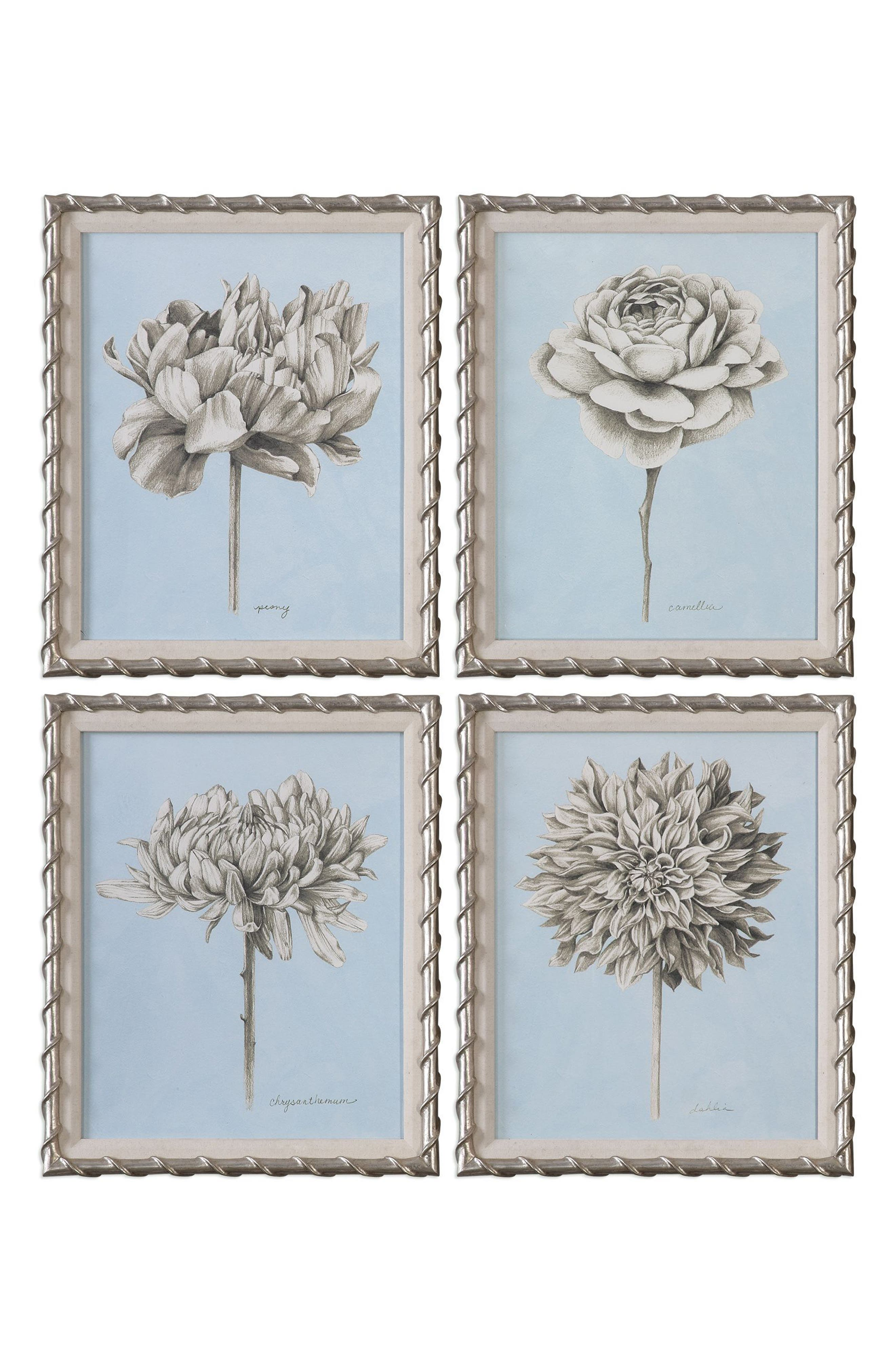 Botanical Study Set of 4 Art Prints,                             Main thumbnail 1, color,                             250