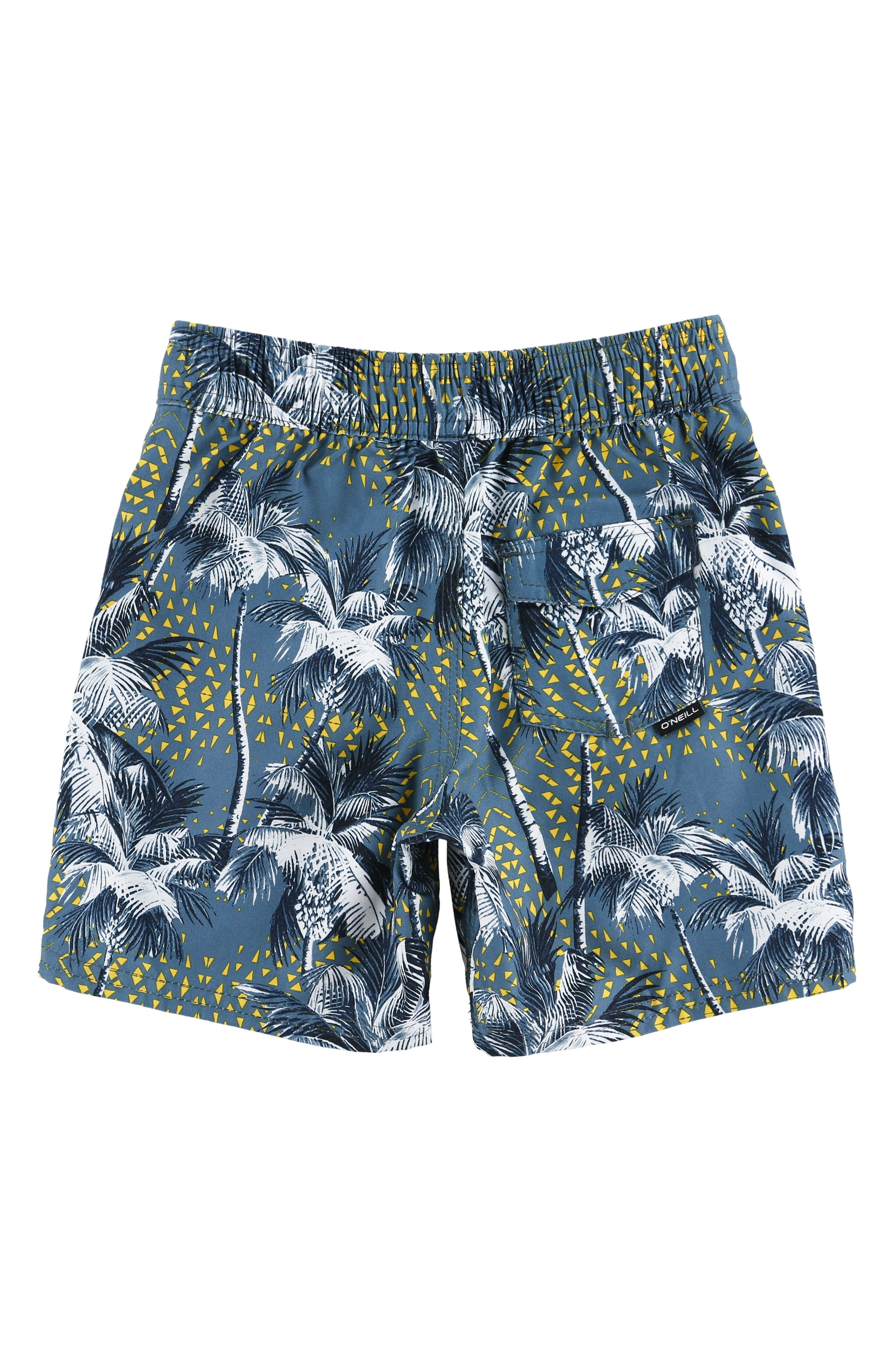 Darn Old Palmer Board Shorts,                             Alternate thumbnail 2, color,                             DUST BLUE