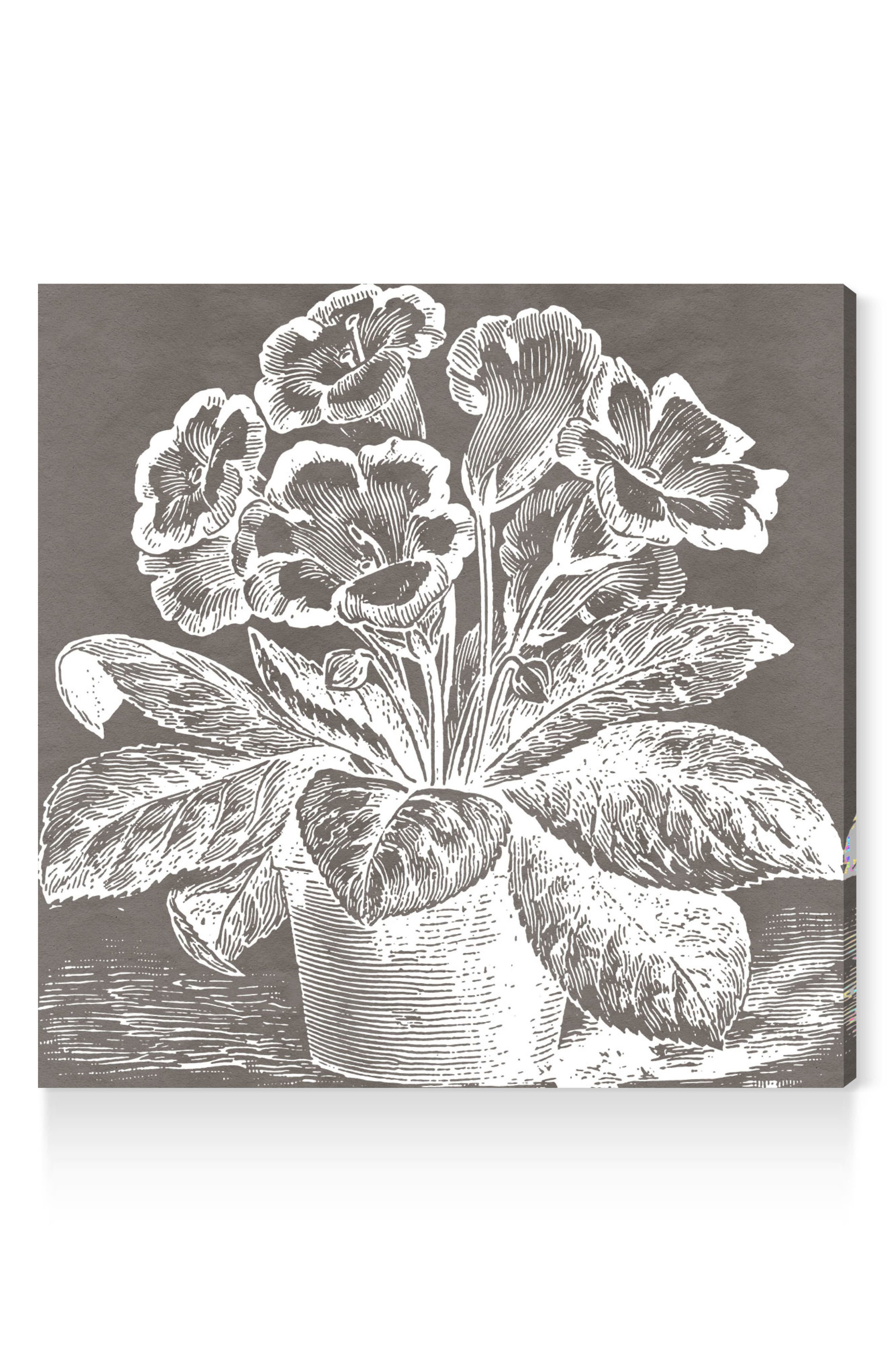 Potted Primrose Canvas Wall Art,                             Main thumbnail 1, color,                             GREY