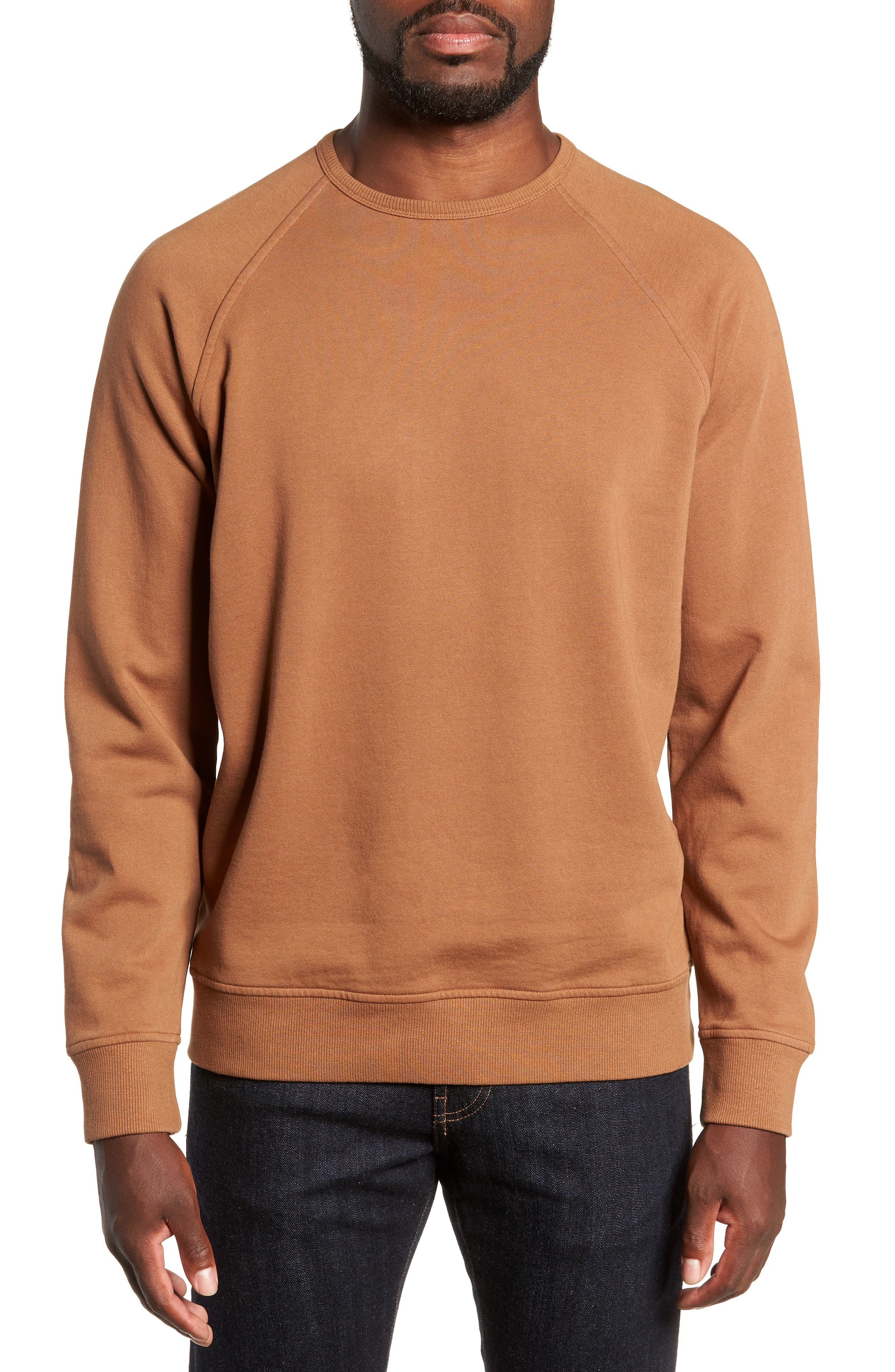 Schrank Regular Fit Cotton Sweatshirt,                             Main thumbnail 1, color,                             200