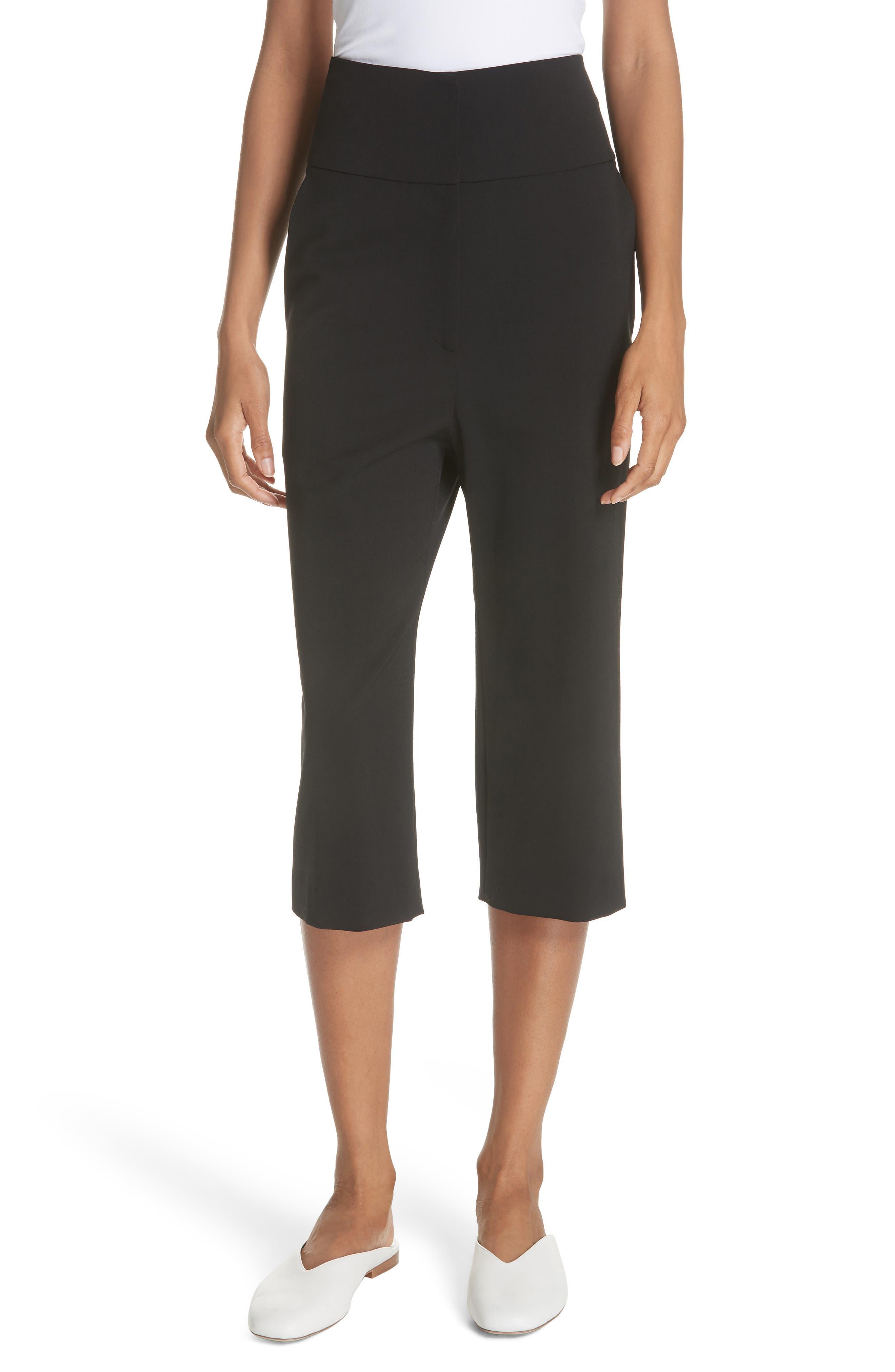 Capri Pants,                         Main,                         color, 001