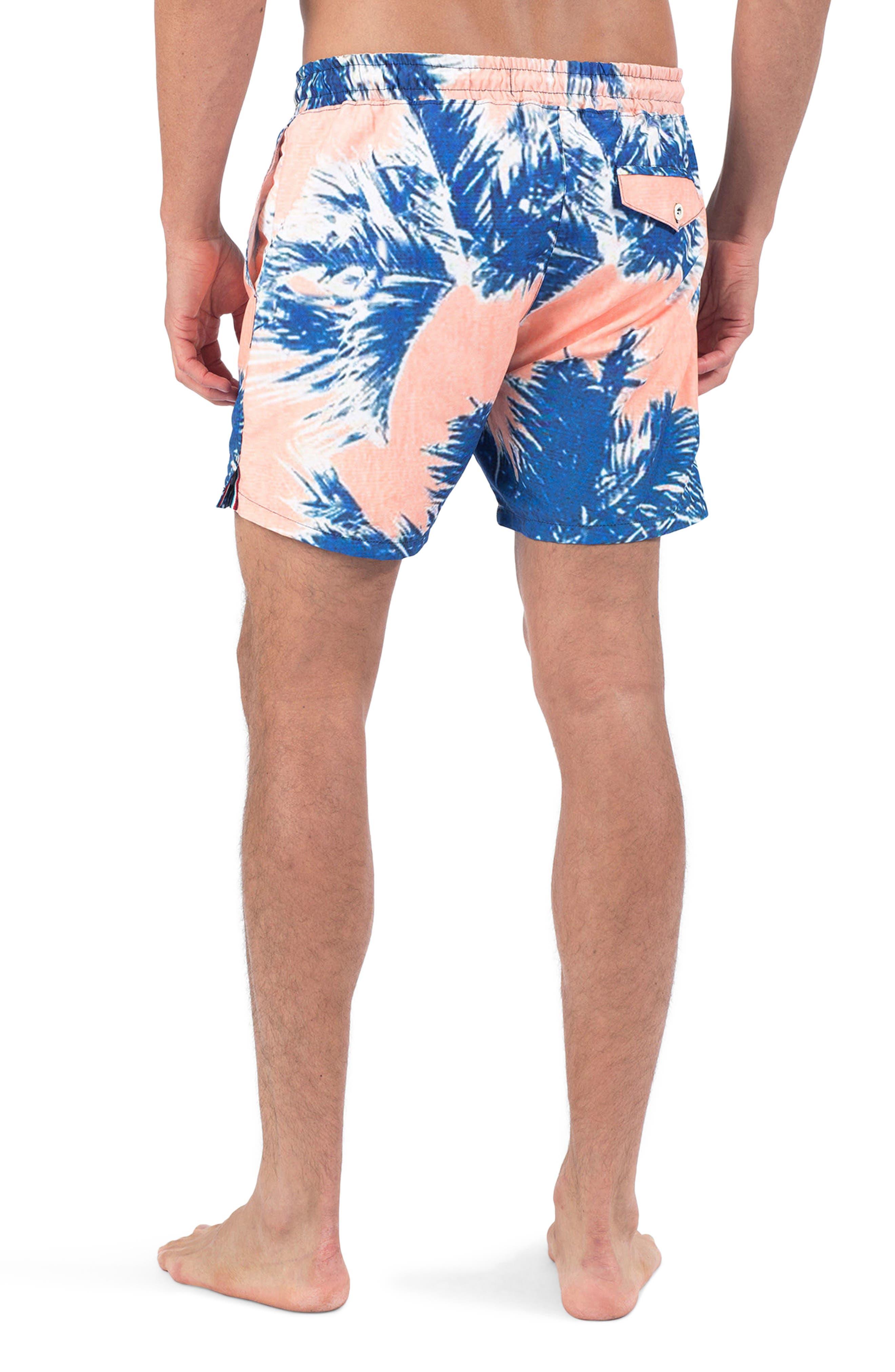 Paleta Palm Swim Shorts,                             Alternate thumbnail 2, color,                             PALETA PALM
