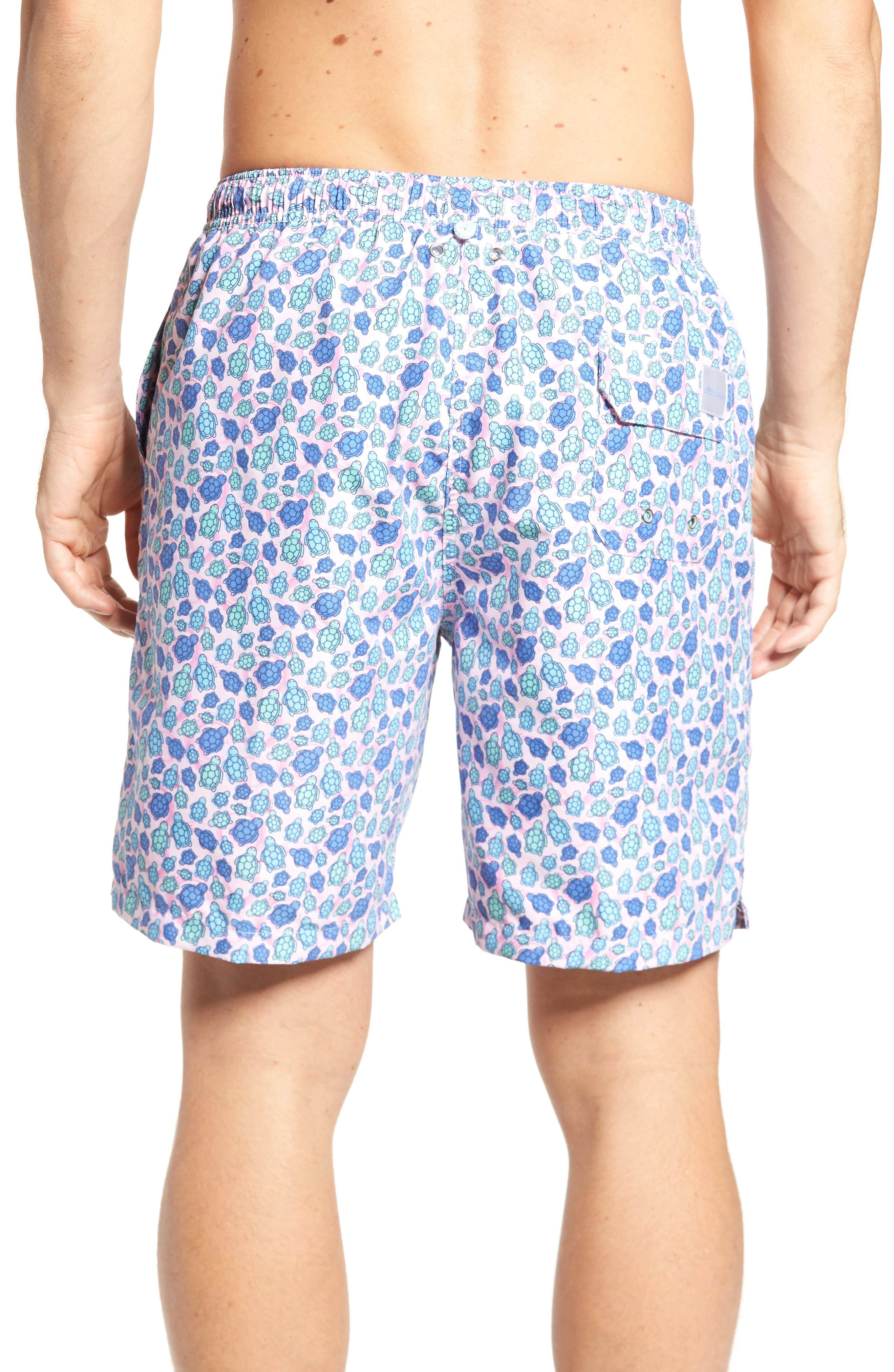 Shelly Turtle Print Swim Shorts,                             Alternate thumbnail 2, color,