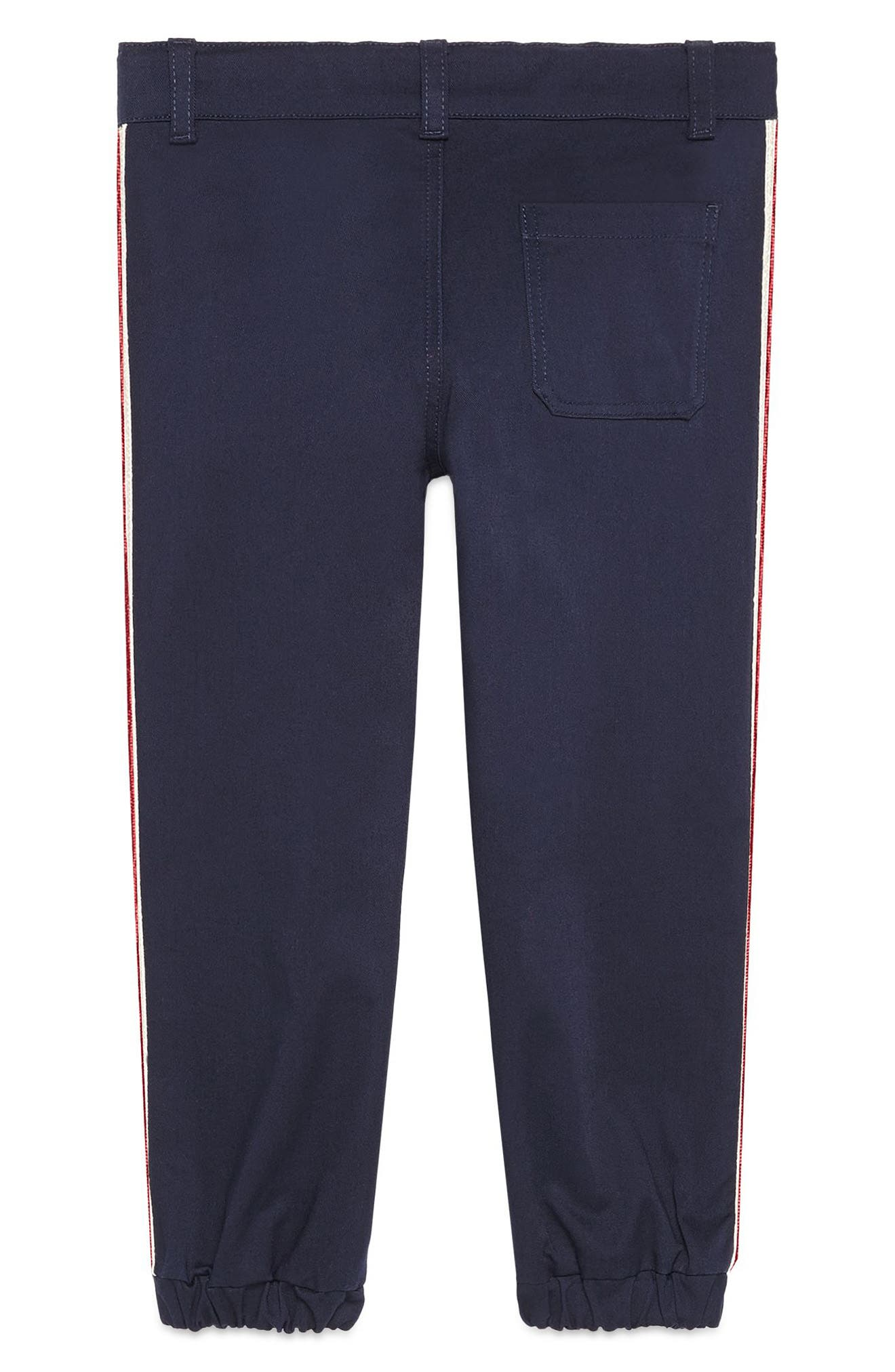 Stripe Pants,                             Main thumbnail 1, color,                             BLUE MULTI