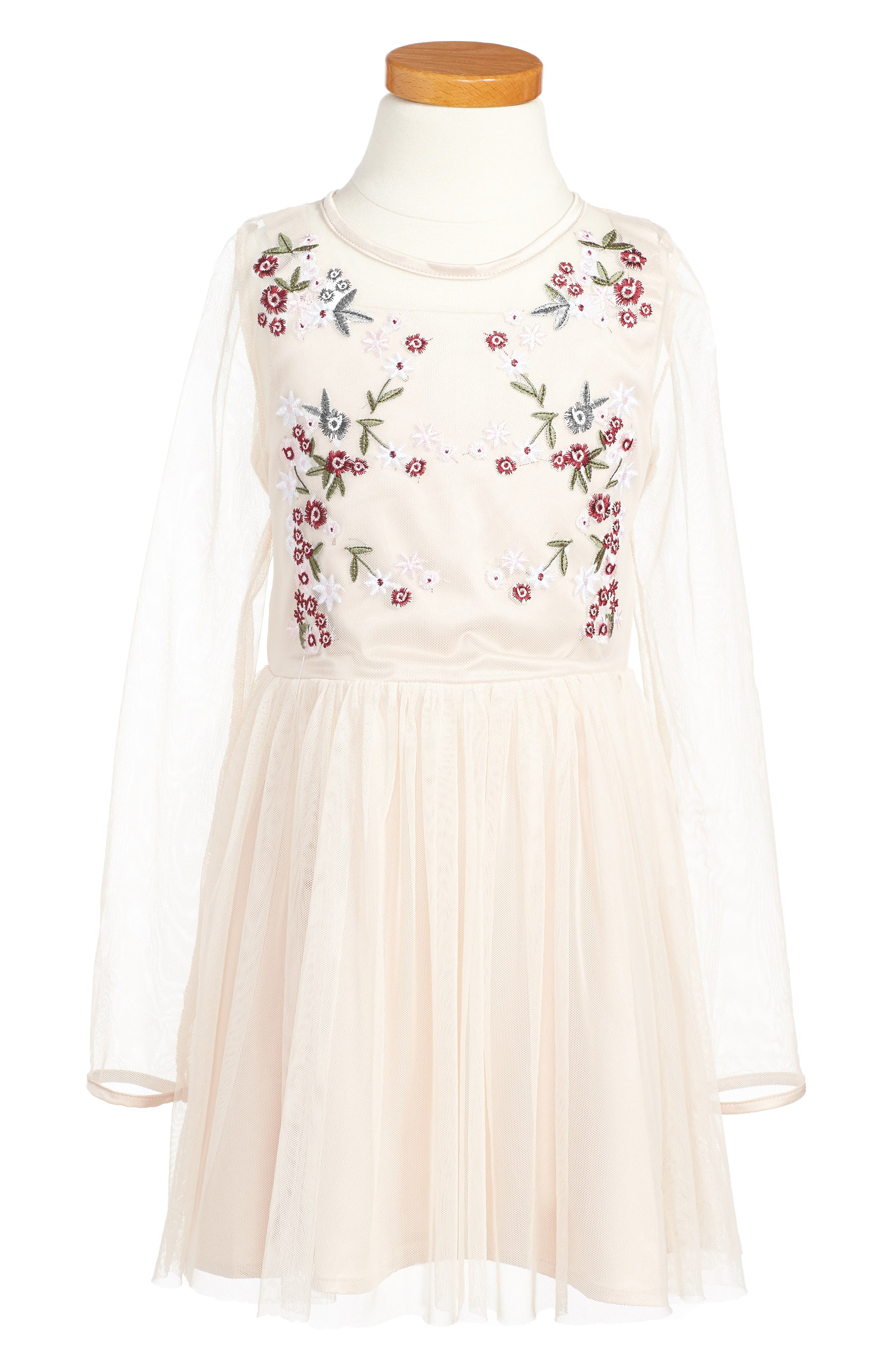 Annabelle Embroidered Mesh Dress,                             Main thumbnail 1, color,                             650