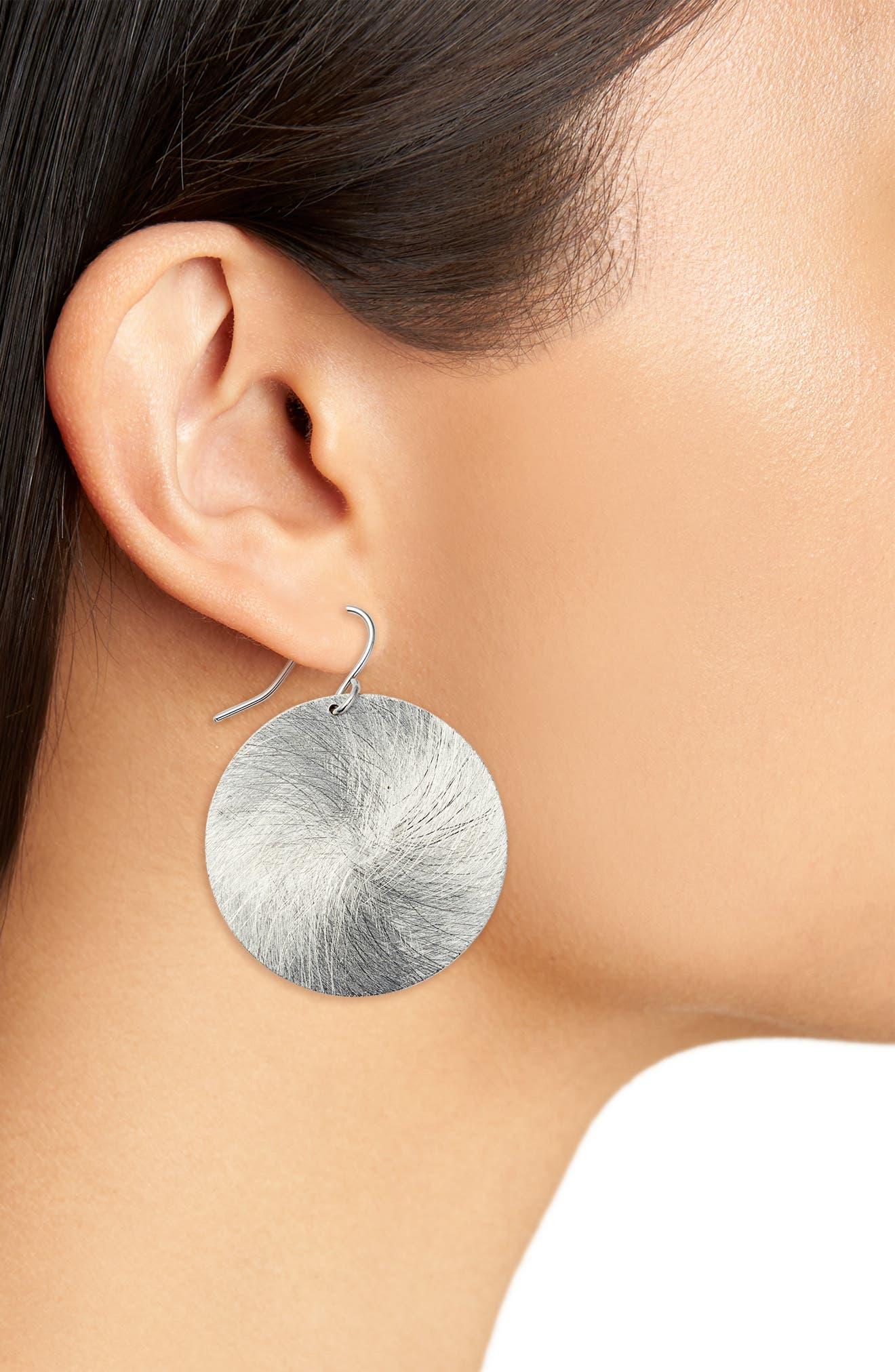 Brushed Disc Drop Earrings,                             Alternate thumbnail 2, color,                             040