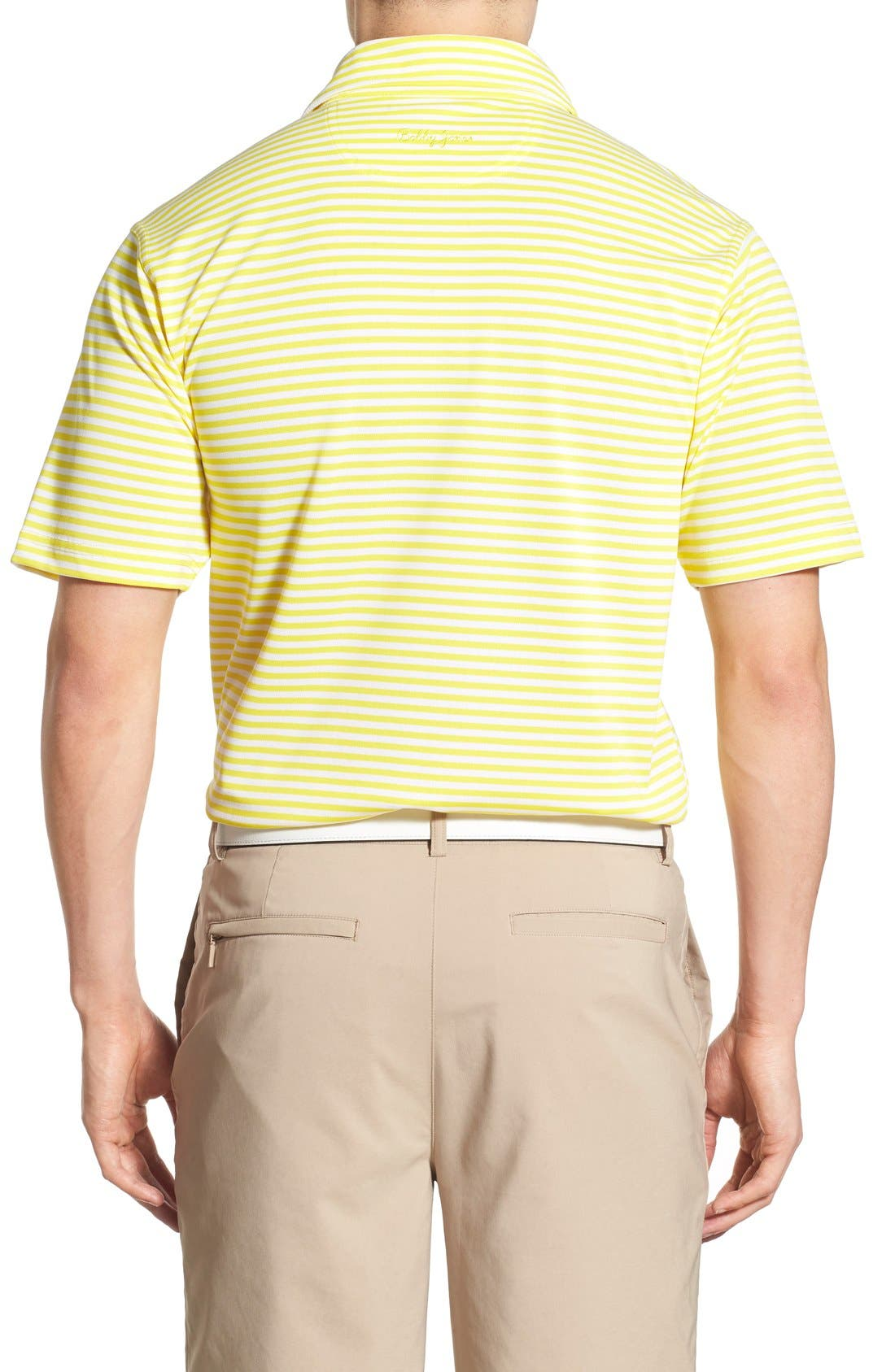 XH2O Feed Stripe Stretch Golf Polo,                             Alternate thumbnail 37, color,