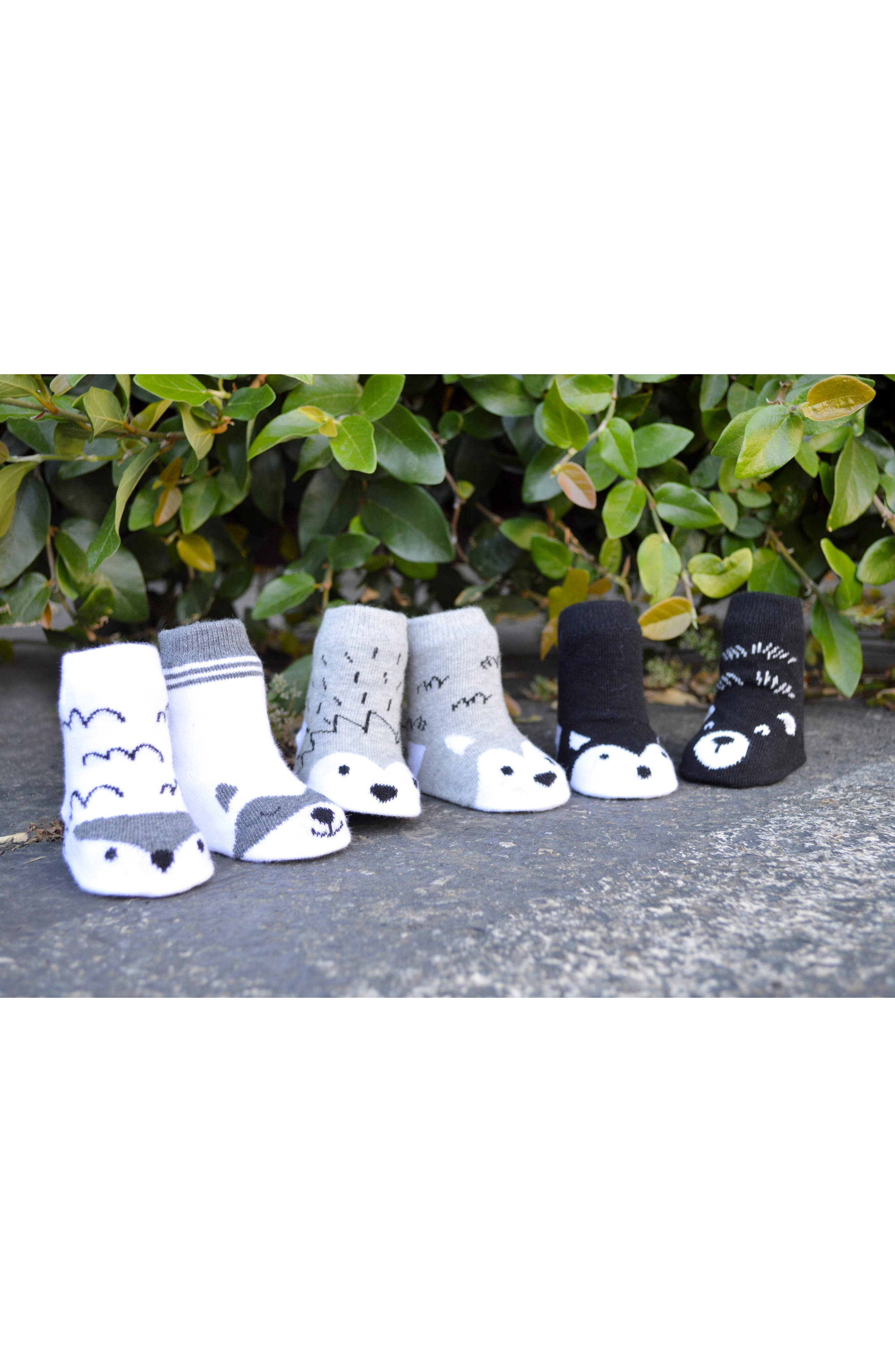 Little Adventurer 6-Pack Socks,                             Alternate thumbnail 2, color,                             020