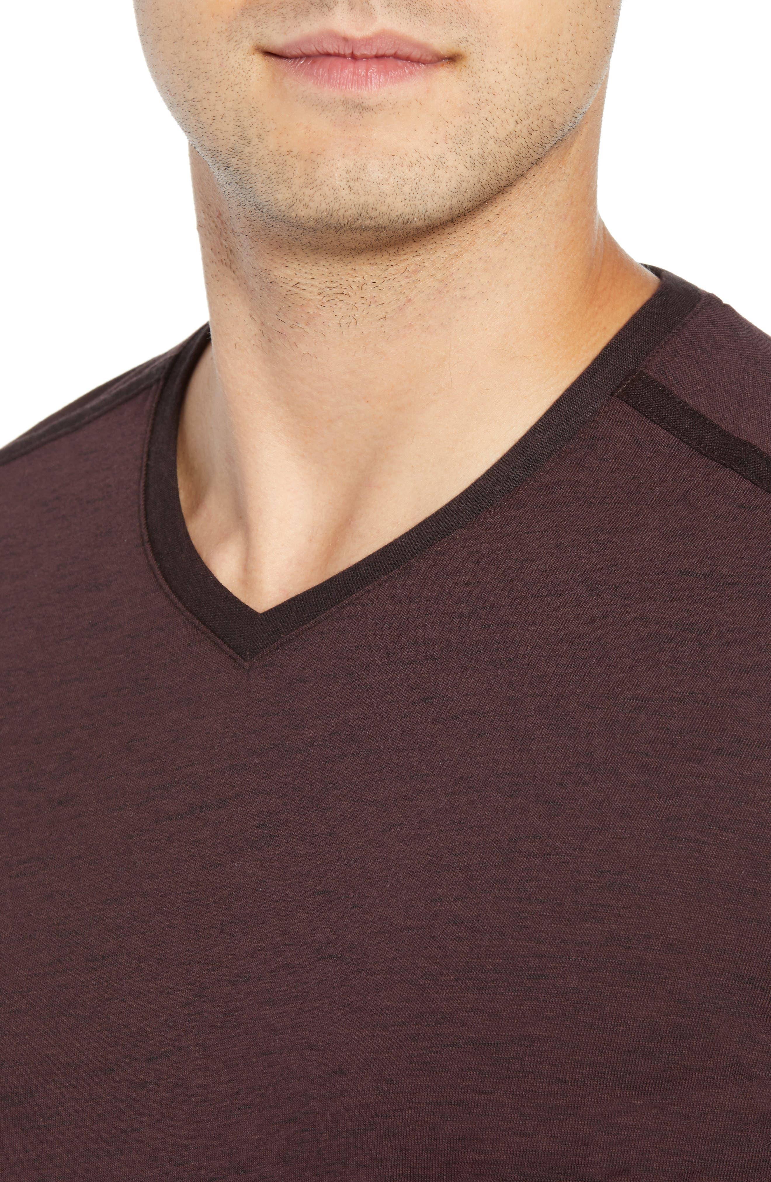 Flatrock Regular Fit V-Neck T-Shirt,                             Alternate thumbnail 4, color,                             PORT