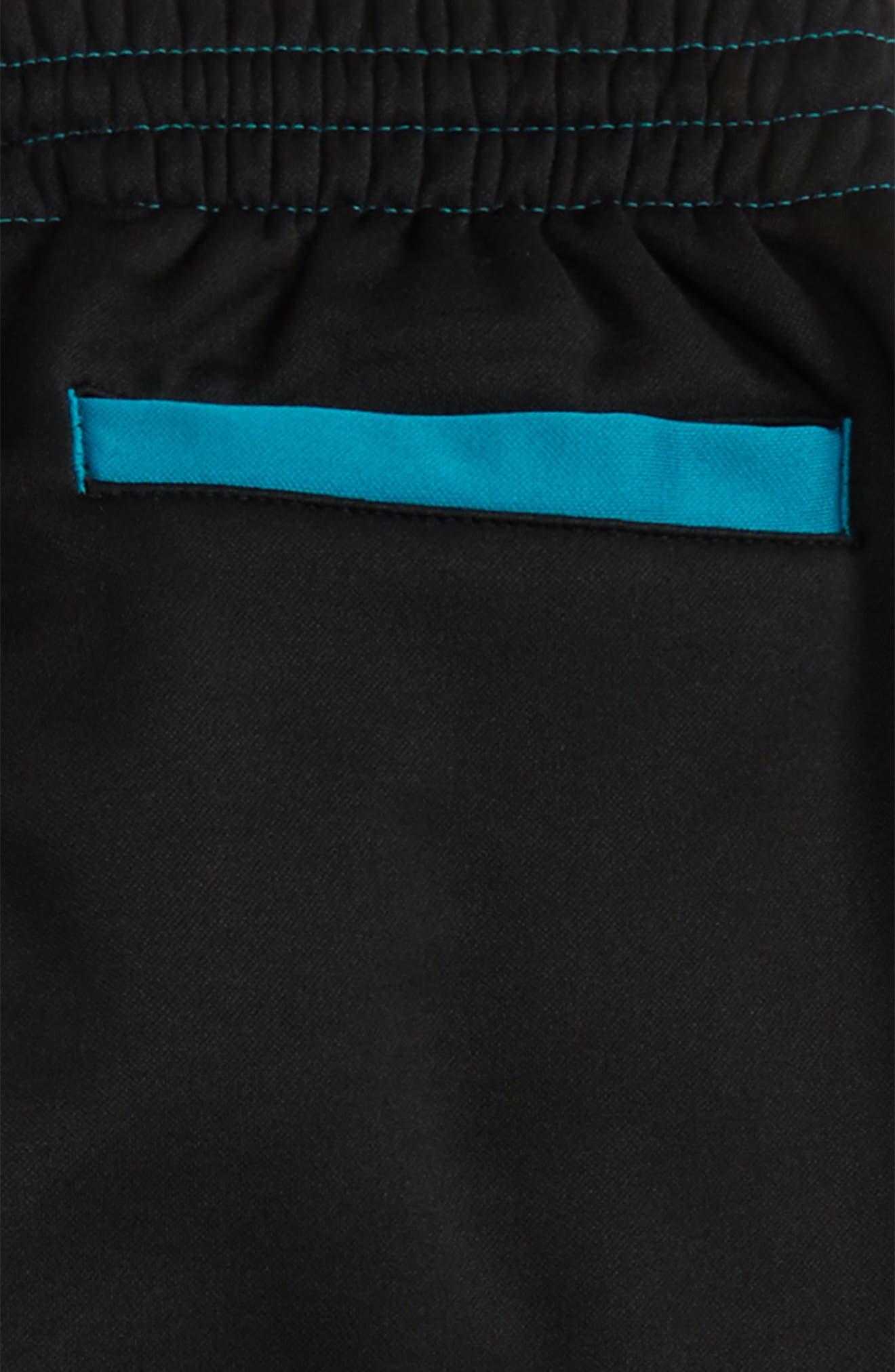 Jordan Flight Air Therma-FIT Reversible Fleece Pants,                             Alternate thumbnail 3, color,                             441
