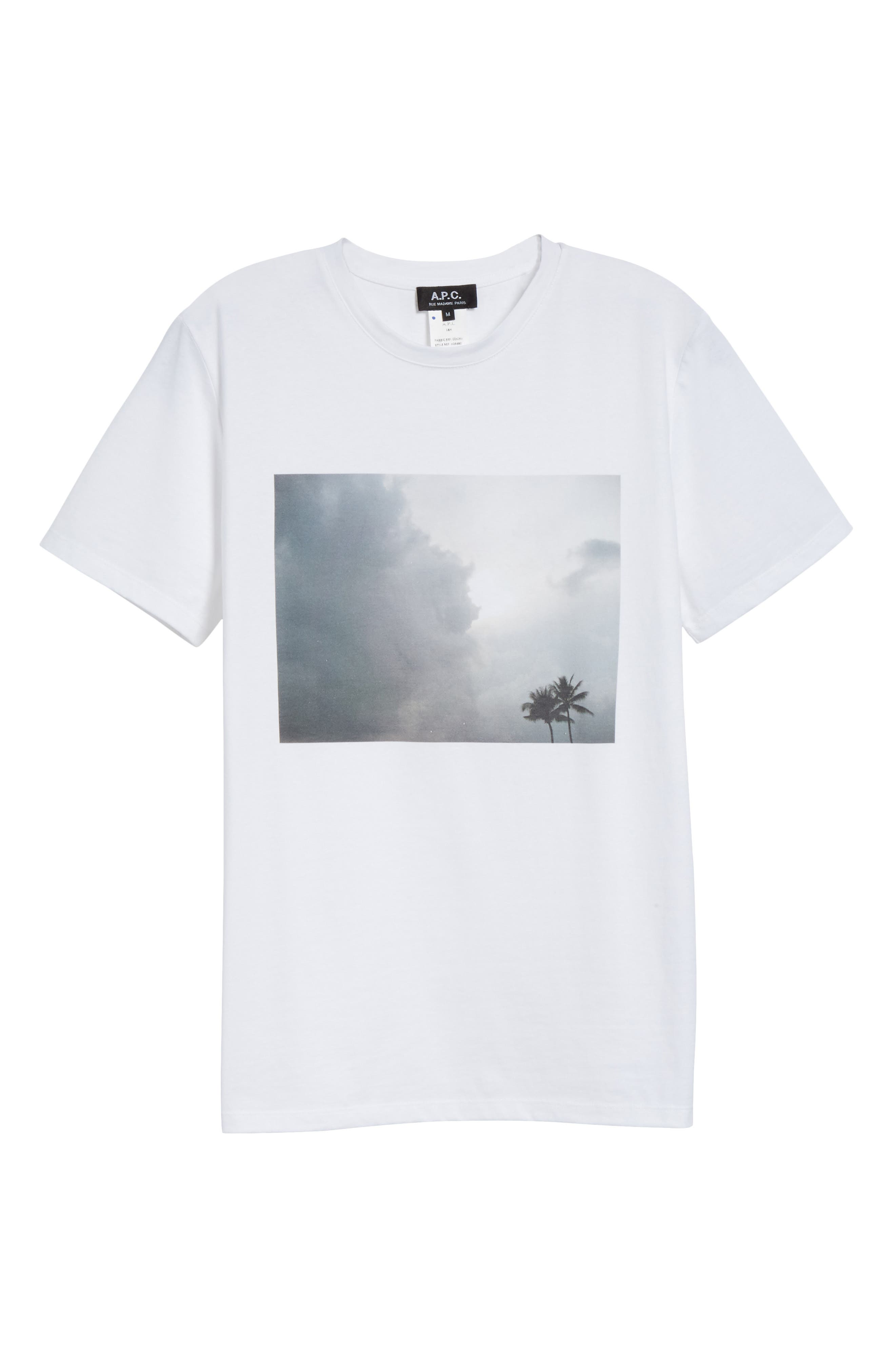 Tropicool Graphic T-Shirt,                             Alternate thumbnail 6, color,                             100