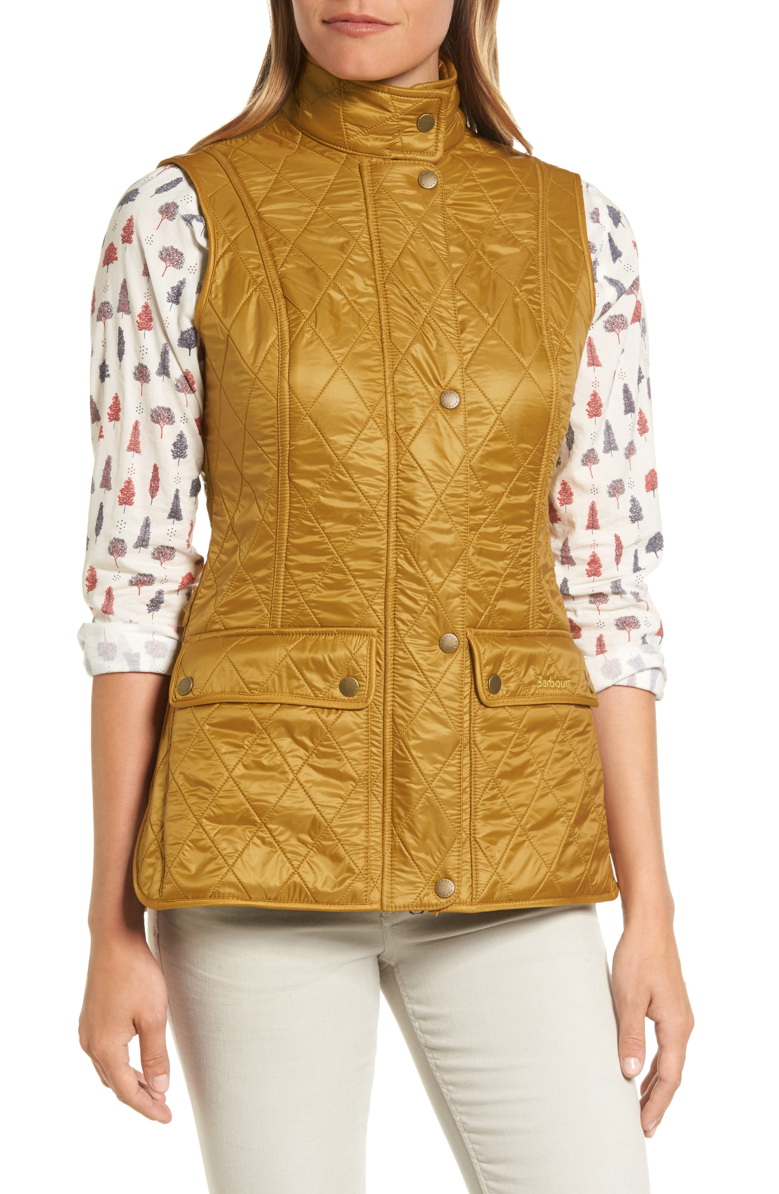 Wray Water Resistant Quilted Gilet,                             Alternate thumbnail 16, color,