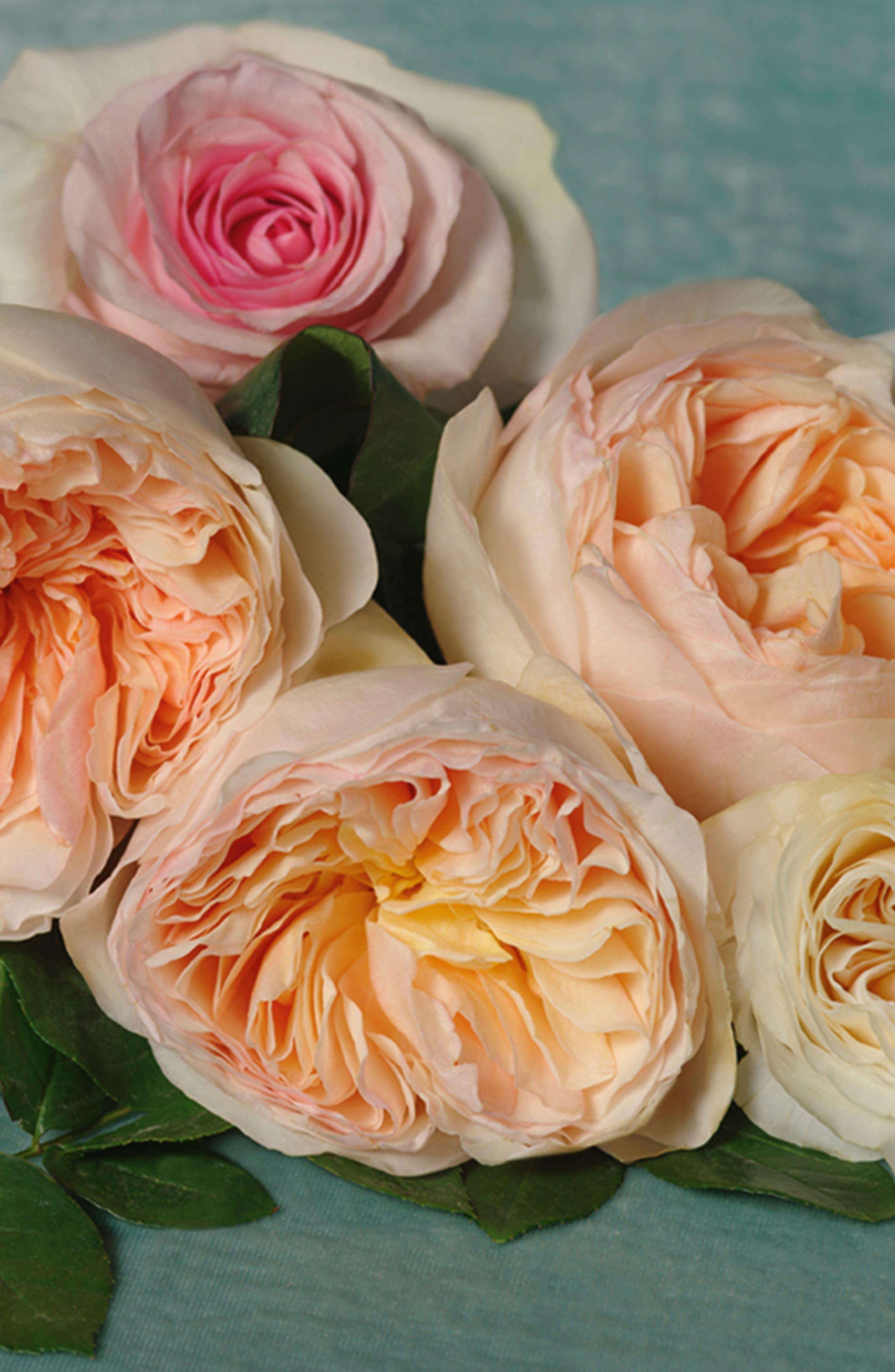 Bloom Nettare di Fiori Eau de Parfum Intense,                             Alternate thumbnail 5, color,                             NO COLOR
