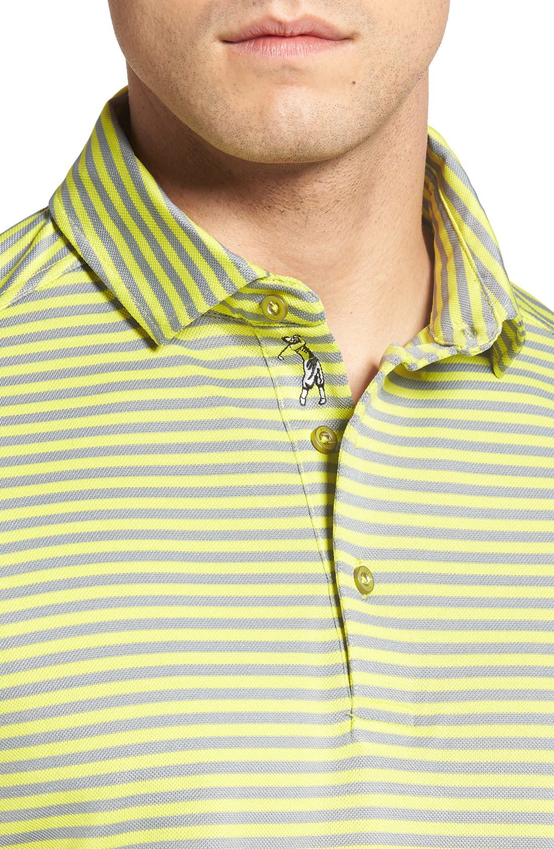 XH2O Feed Stripe Stretch Golf Polo,                             Alternate thumbnail 74, color,
