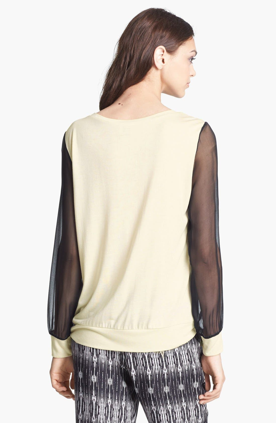HAUTE HIPPIE,                             Chiffon Sleeve Sweatshirt,                             Alternate thumbnail 5, color,                             110