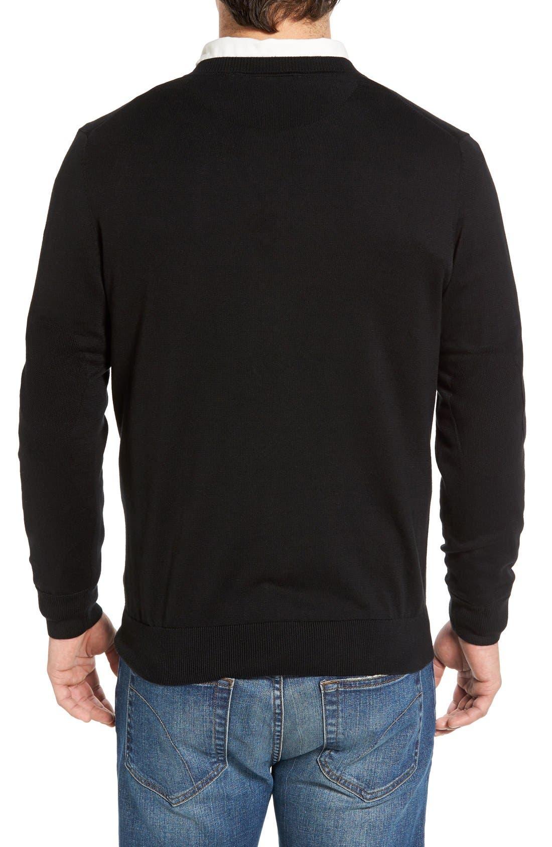 Cotton Jersey V-Neck Sweater,                             Alternate thumbnail 9, color,