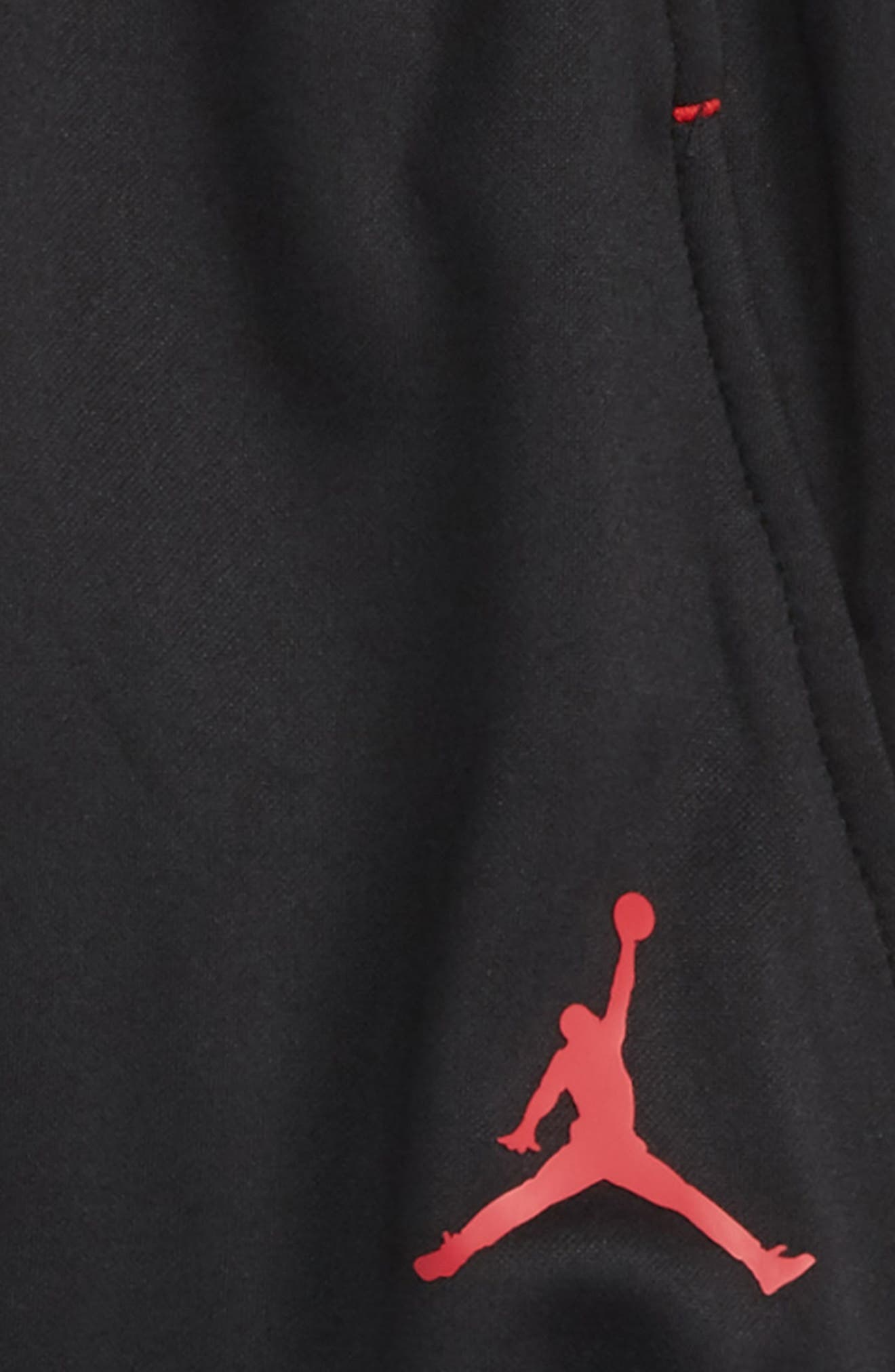 Jordan Dry 23 Alpha FZ Therma-FIT Sweatpants,                             Alternate thumbnail 2, color,                             004