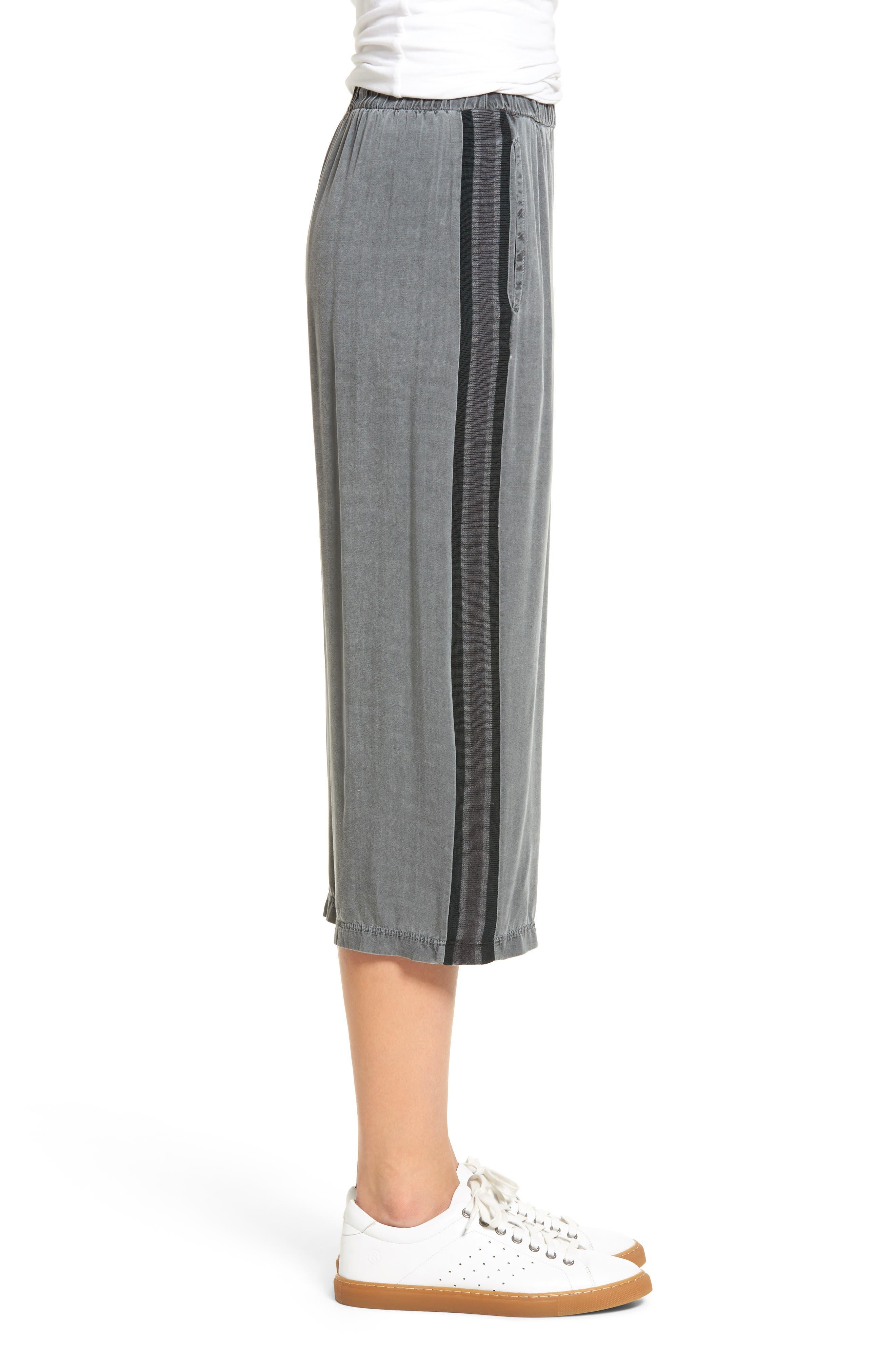 Stripe Crop Pants,                             Alternate thumbnail 3, color,                             020