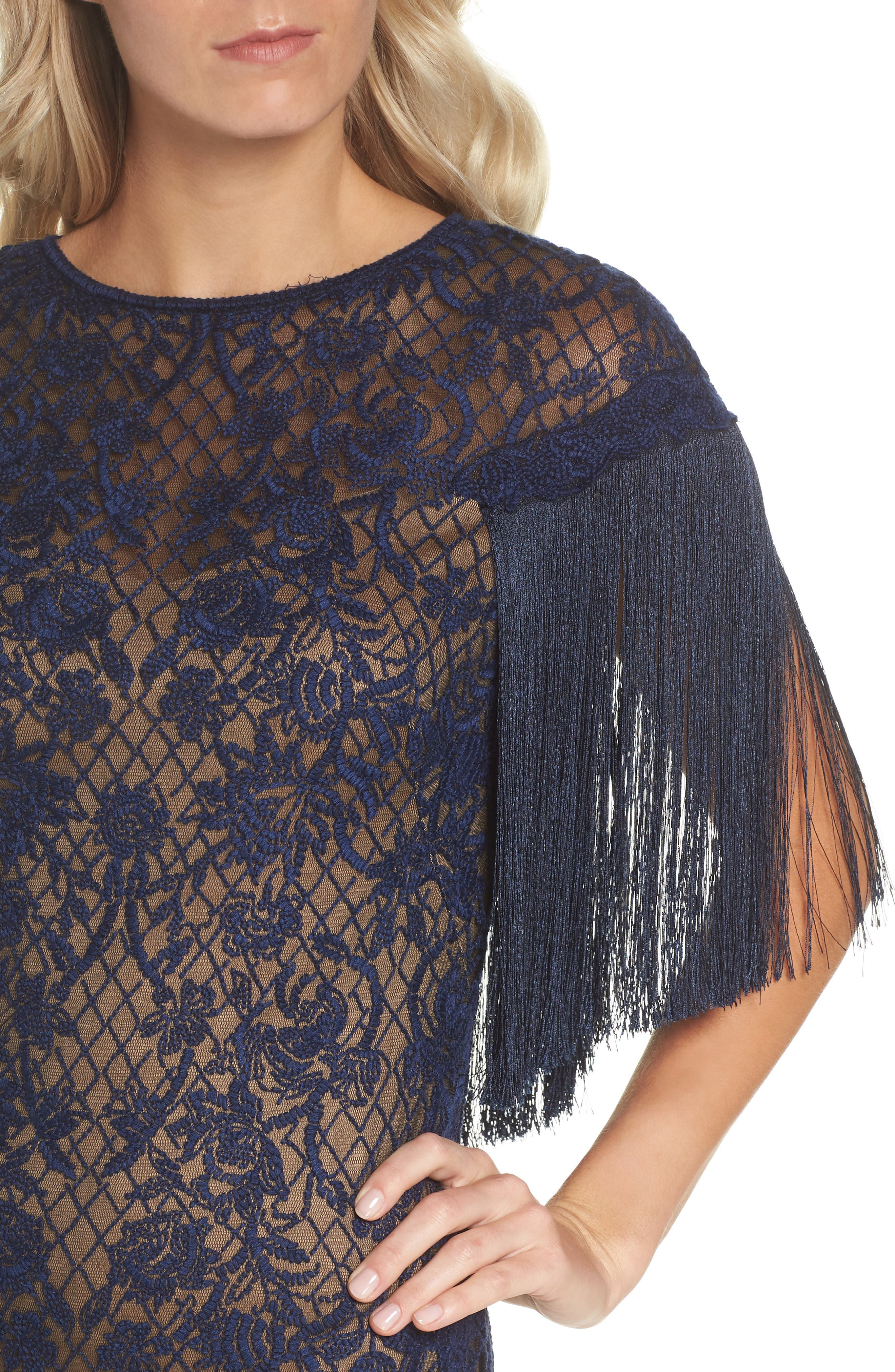 Embroidered Mesh & Fringe Gown,                             Alternate thumbnail 4, color,                             MIDNIGHT/ NUDE