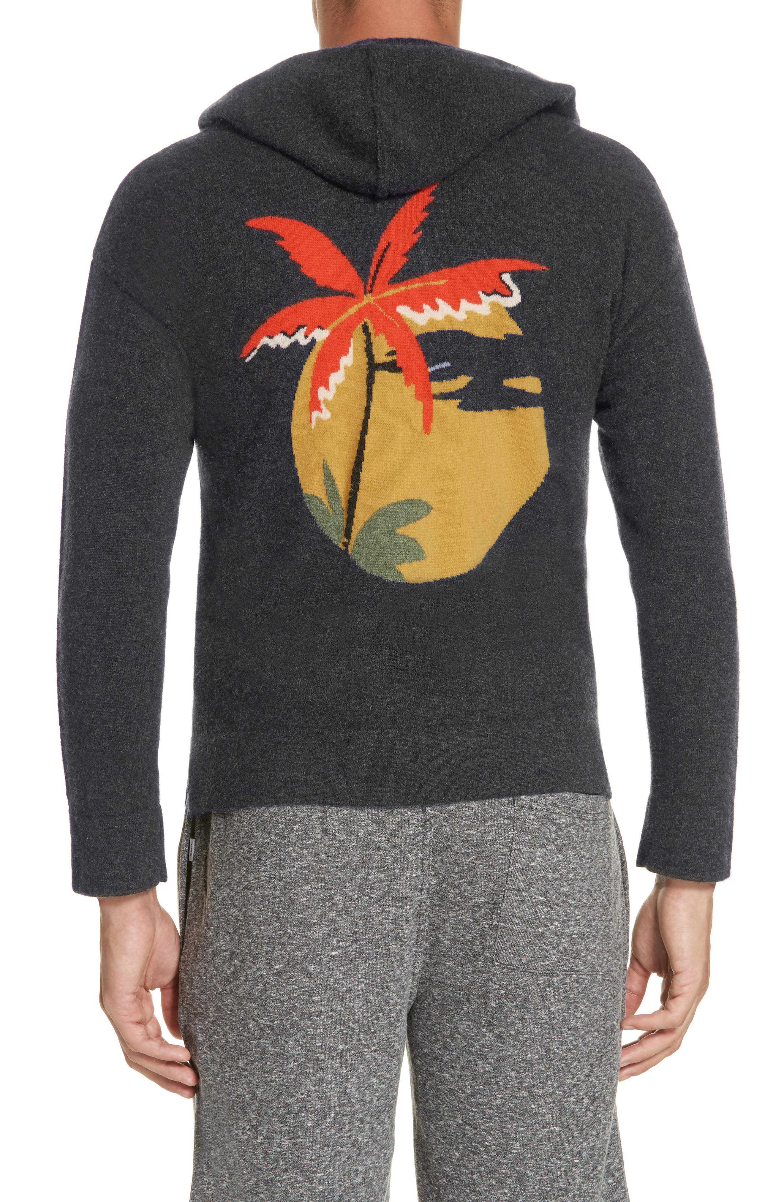 Jamie Sunset Cashmere Hooded Sweater,                             Alternate thumbnail 2, color,                             CHARCOAL