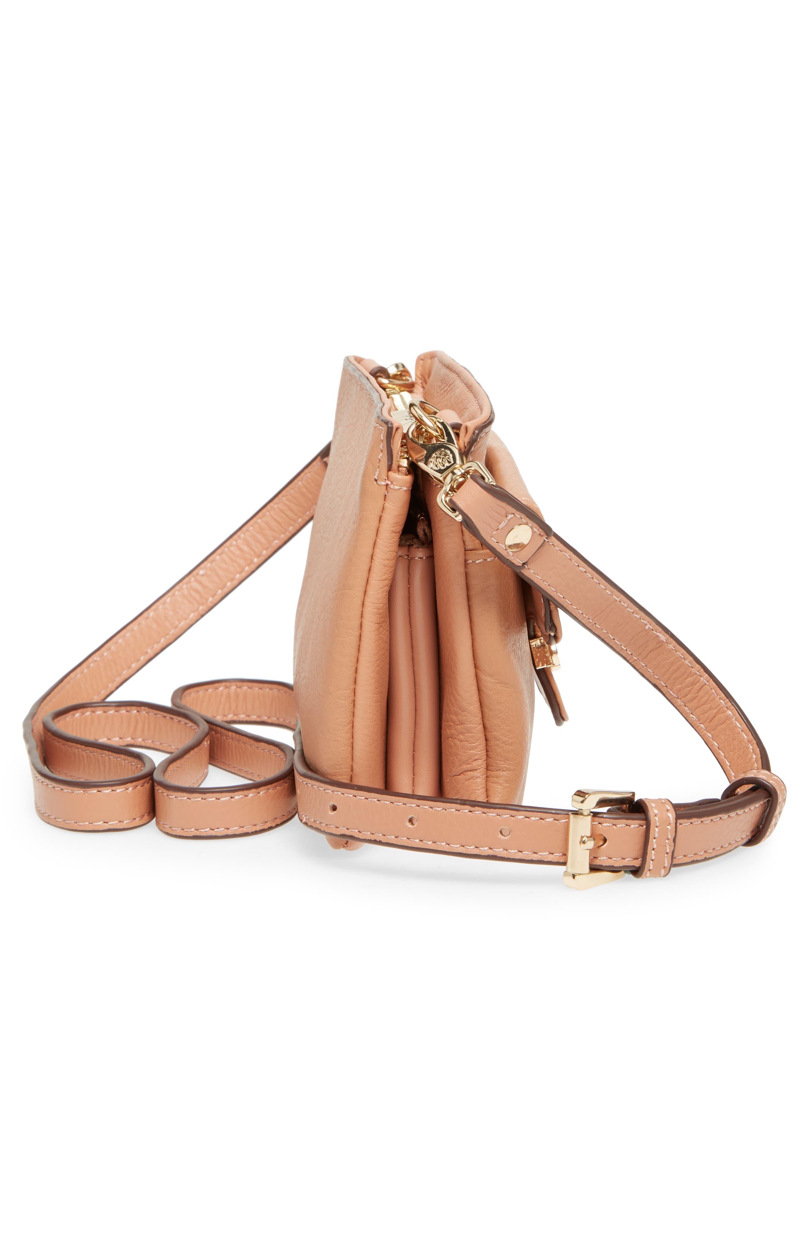 Katerini Leather Crossbody Wallet,                             Alternate thumbnail 25, color,