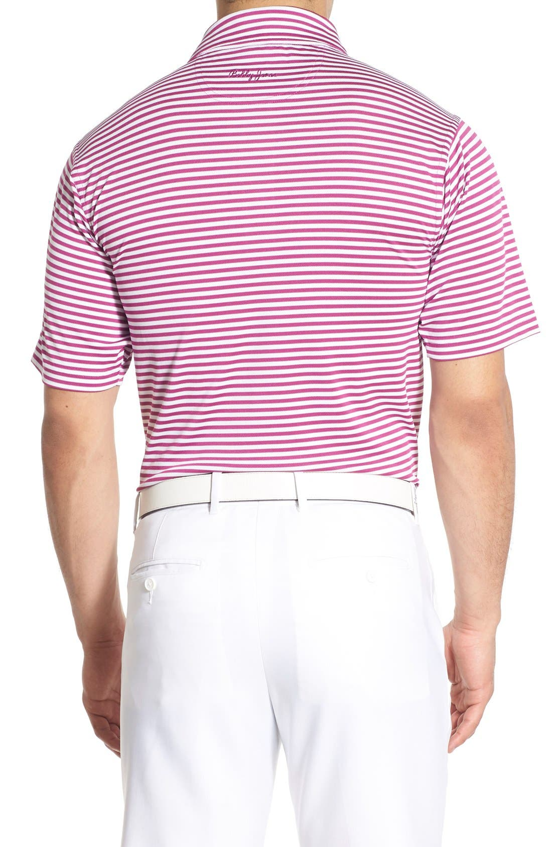 XH2O Feed Stripe Stretch Golf Polo,                             Alternate thumbnail 34, color,
