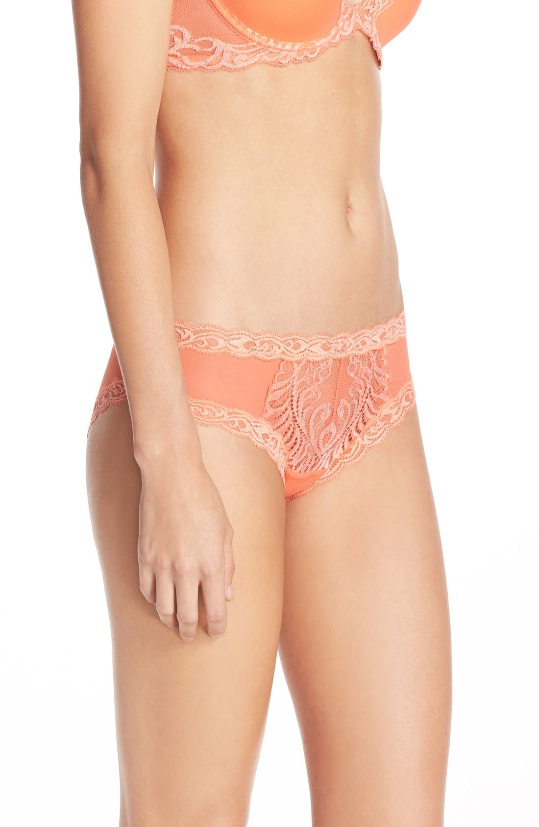 Feathers Hipster Briefs,                             Alternate thumbnail 251, color,