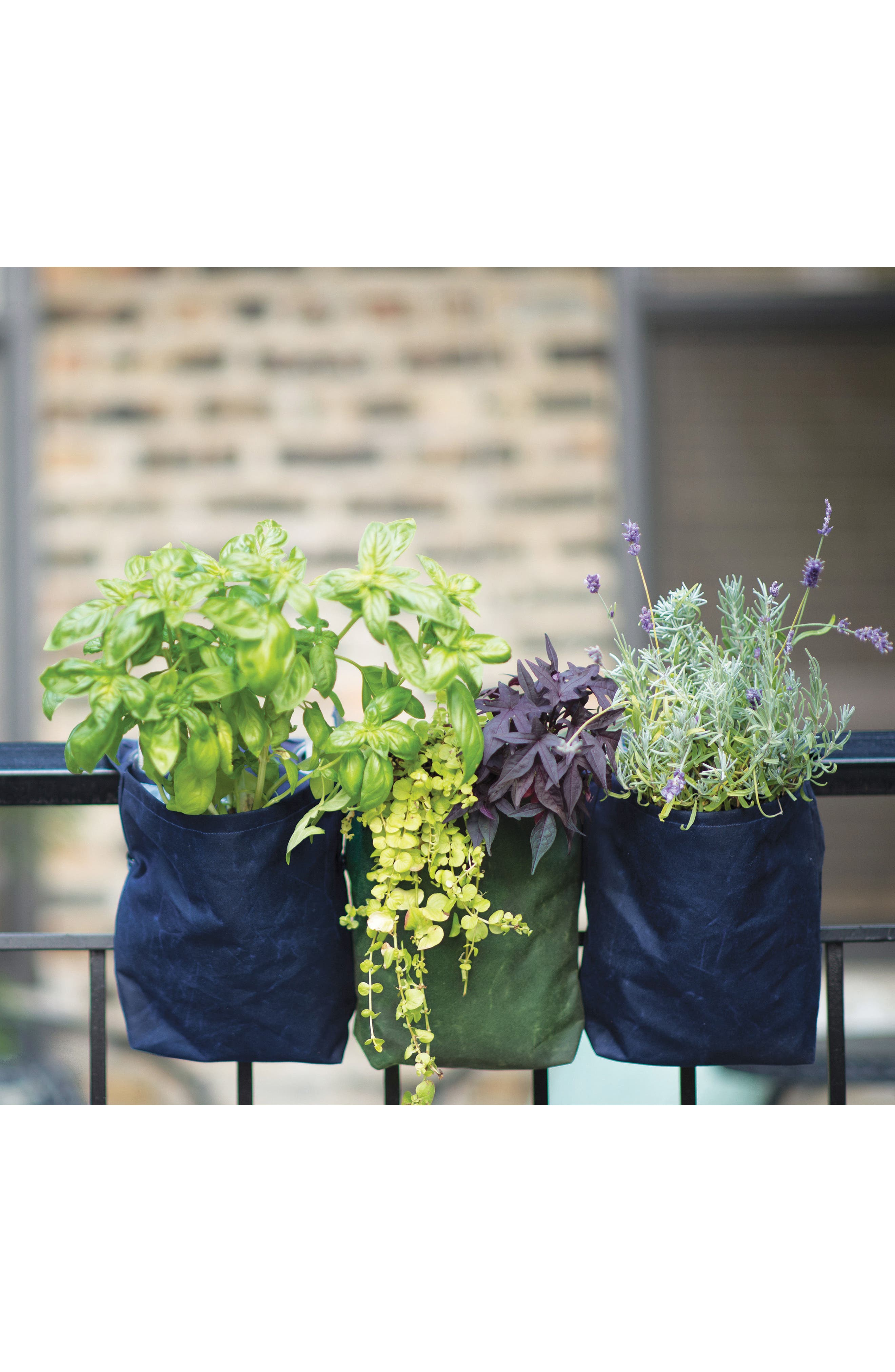 Small Waxed Canvas GrowPack Planter,                             Alternate thumbnail 5, color,                             300