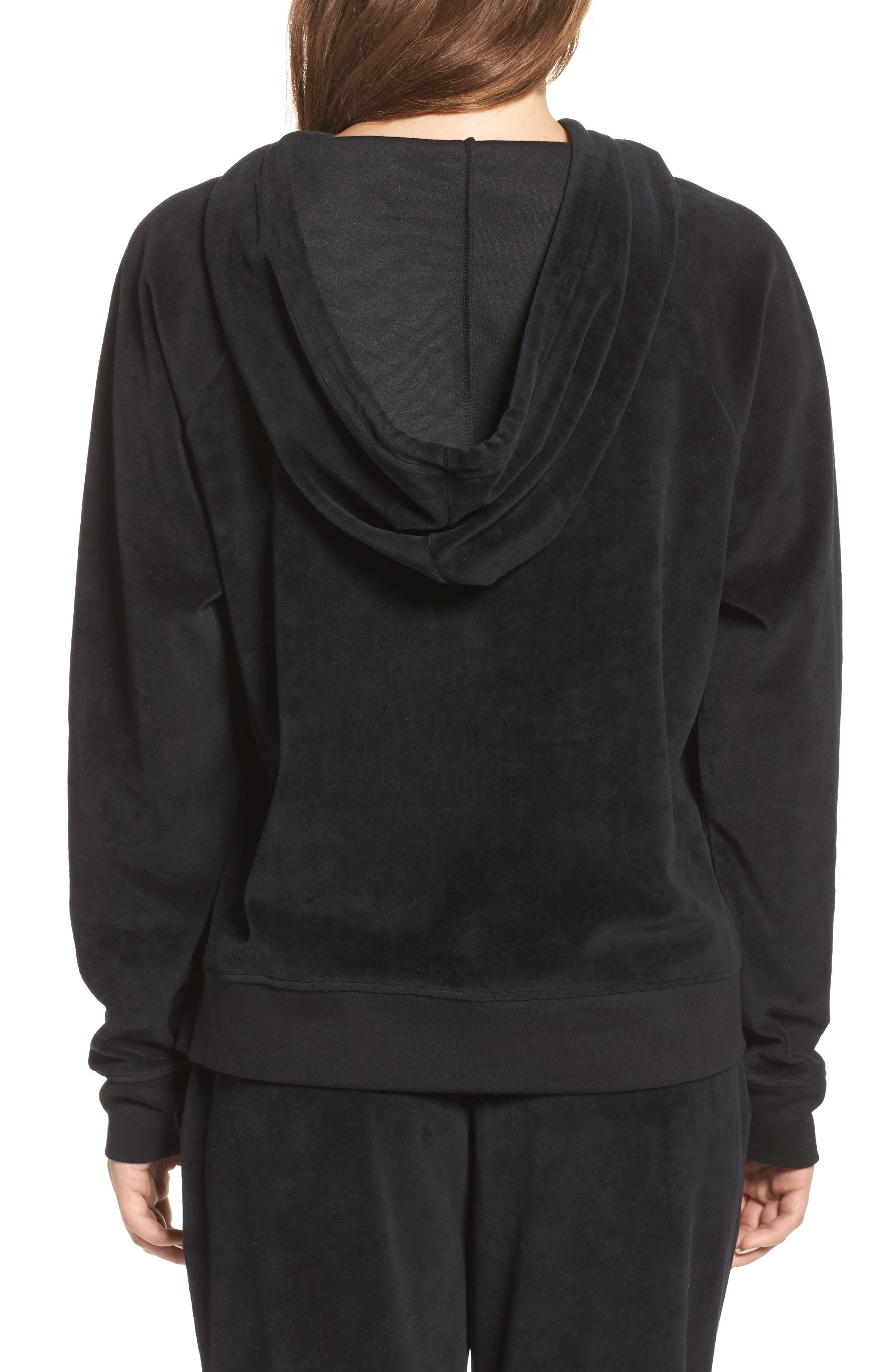 Brunette Embroidered Velour Hoodie,                             Alternate thumbnail 2, color,