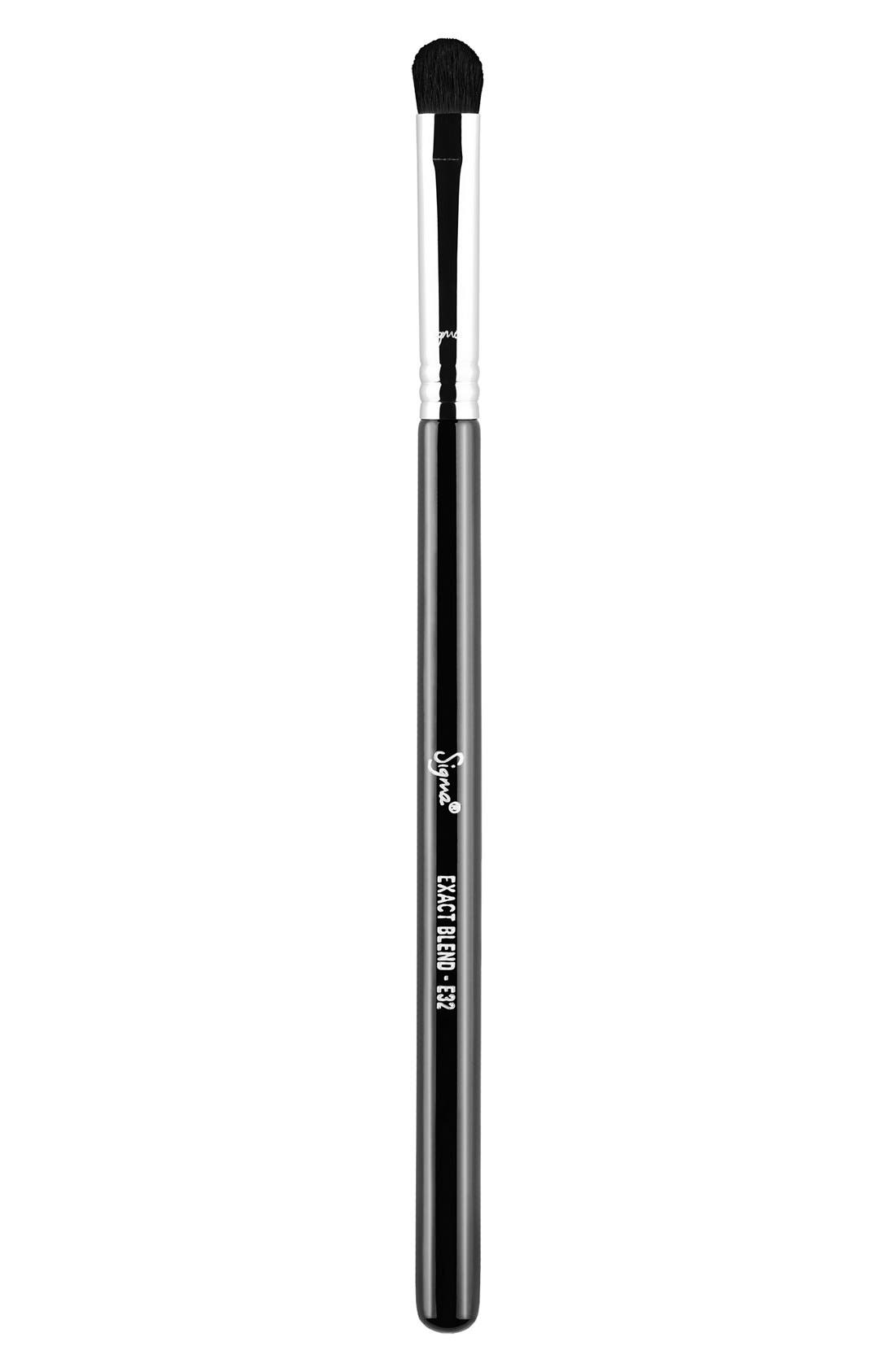 E32 Exact Blend<sup>™</sup> Brush,                         Main,                         color, NO COLOR