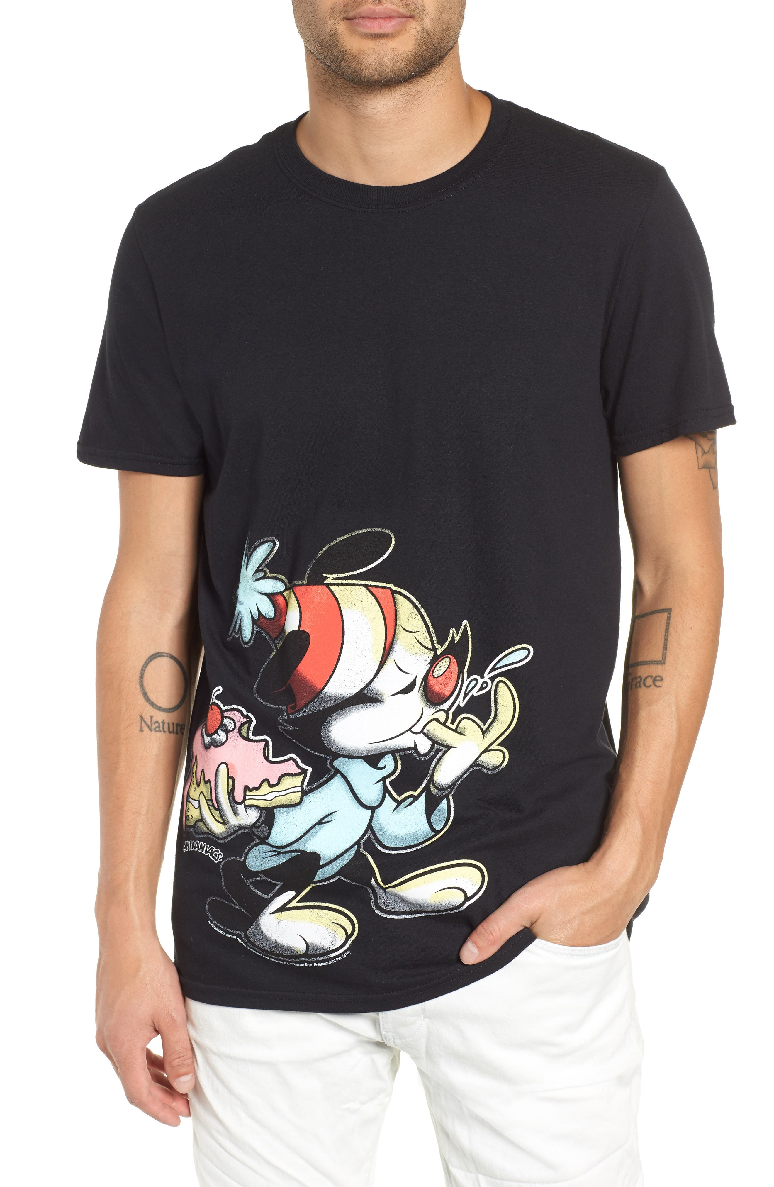 Animaniacs Cake Graphic T-Shirt,                             Main thumbnail 1, color,                             001