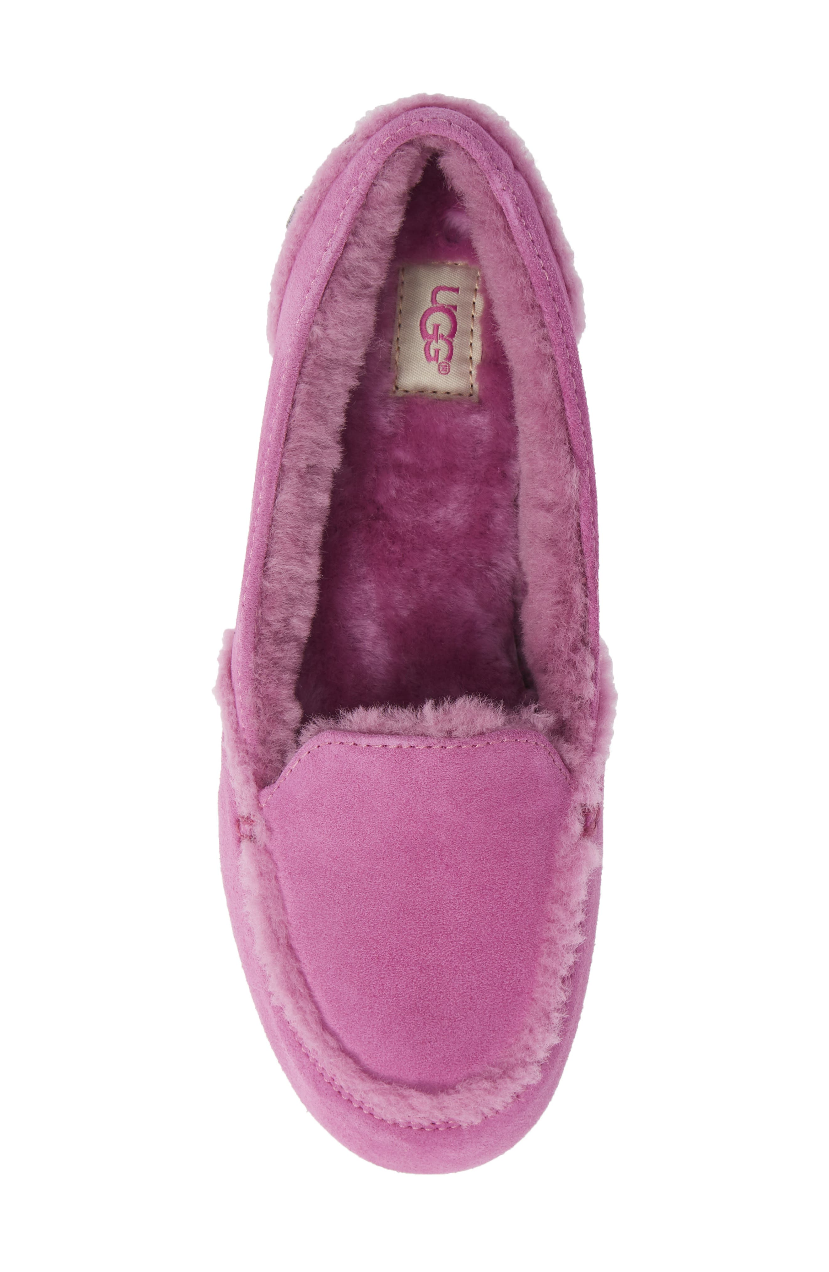 Hailey Slipper,                             Alternate thumbnail 5, color,                             BODACIOUS SUEDE