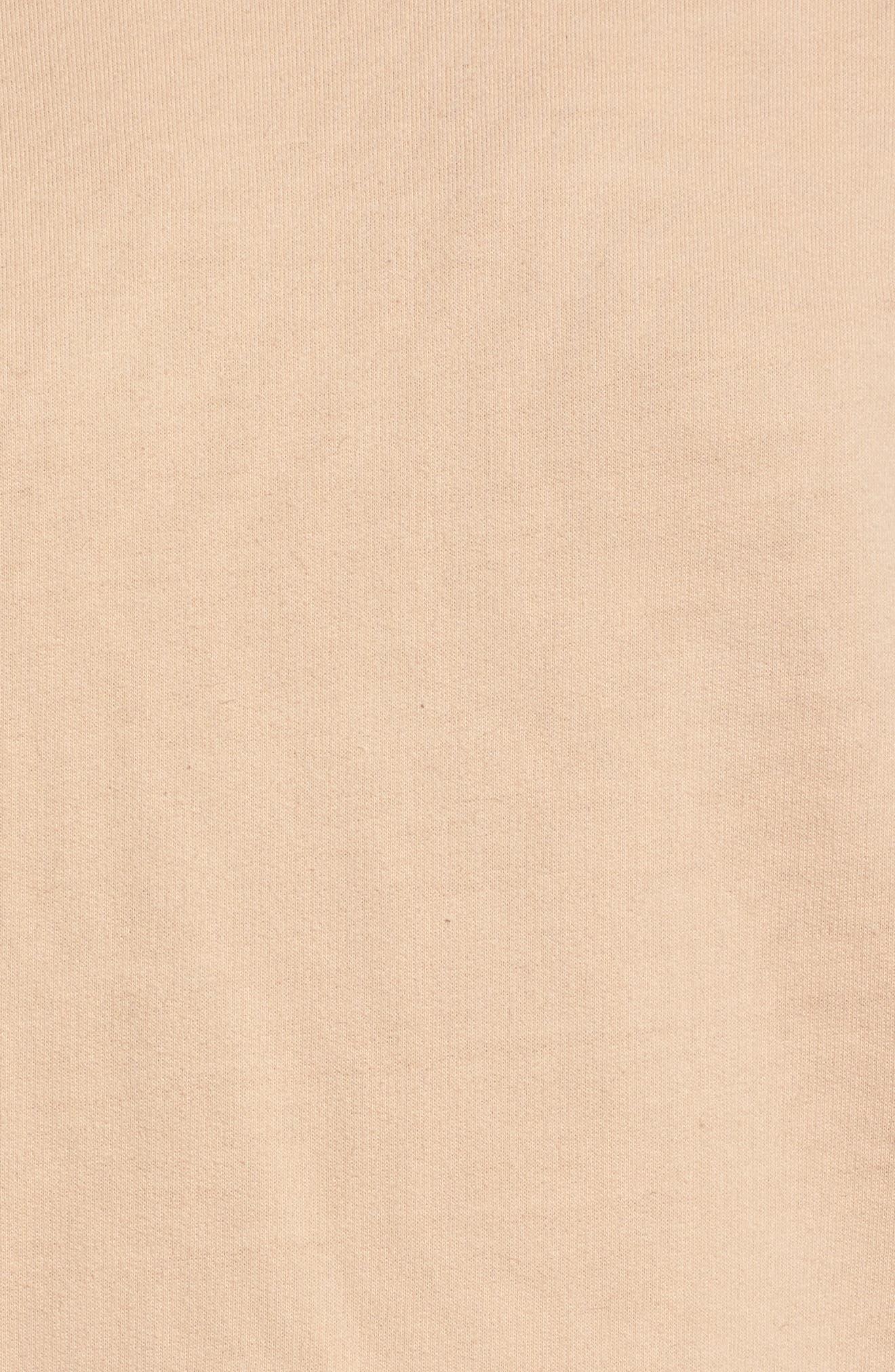 Sweatshirt Dress,                             Alternate thumbnail 5, color,                             950
