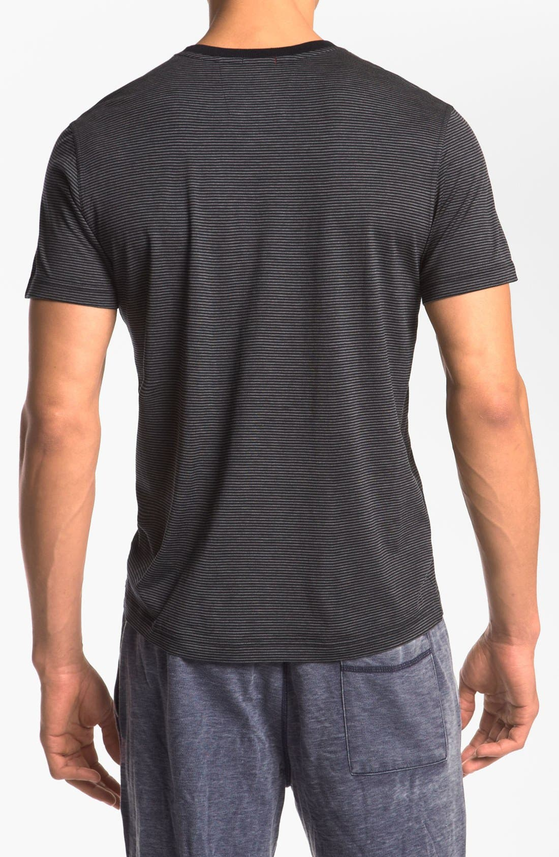 Silk & Cotton V-Neck T-Shirt,                             Alternate thumbnail 2, color,                             429