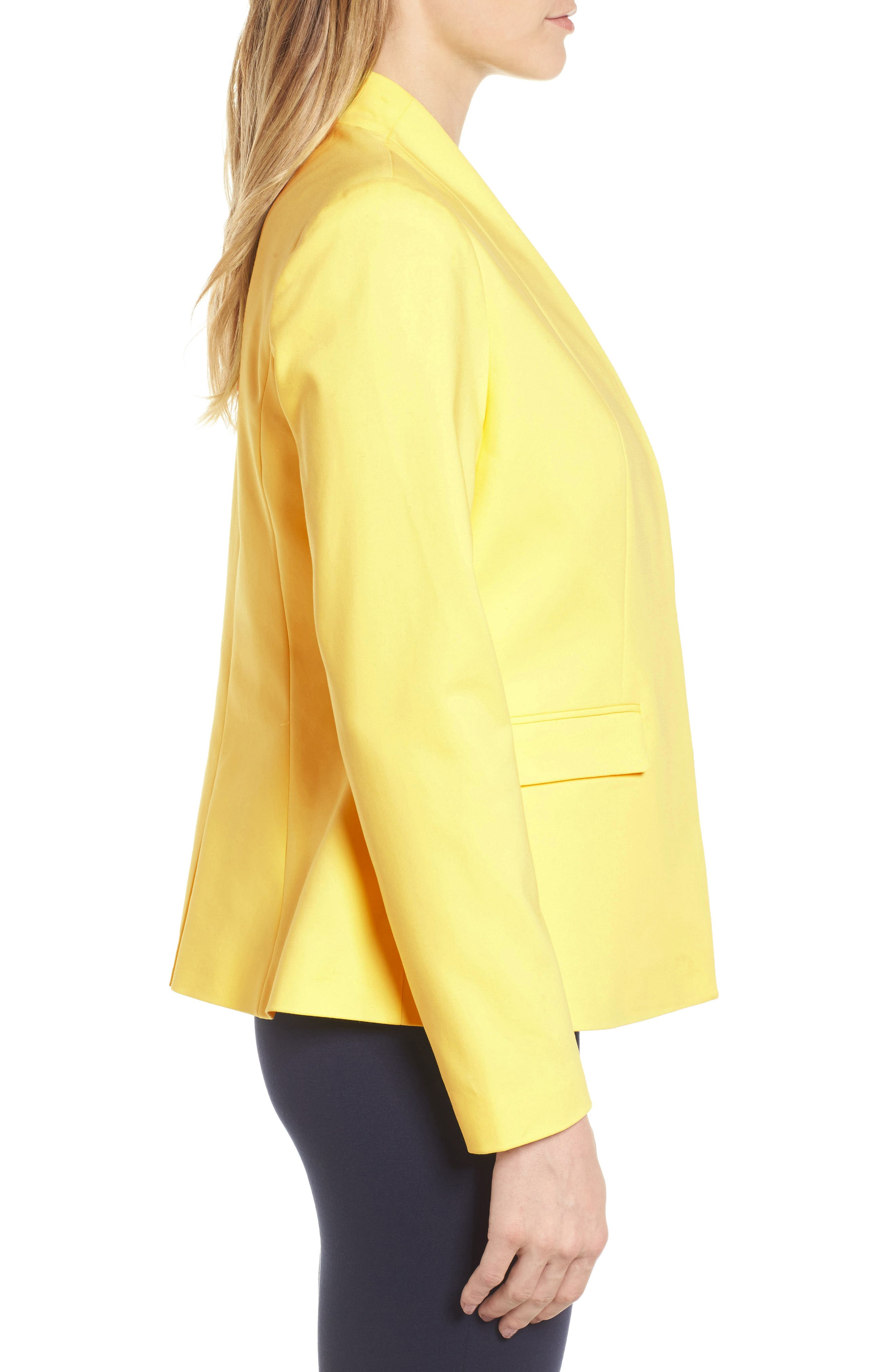 Stand Collar Jacket,                             Alternate thumbnail 3, color,                             784
