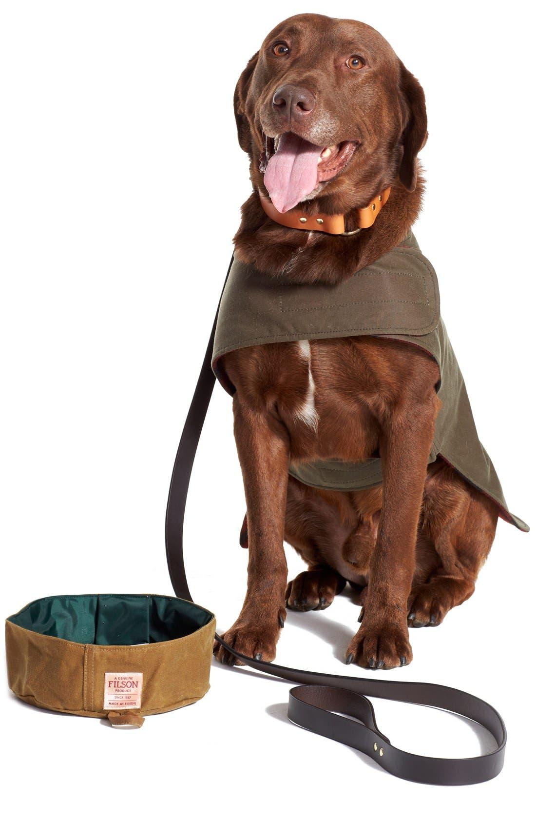Collapsible Dog Bowl,                             Alternate thumbnail 2, color,                             TAN