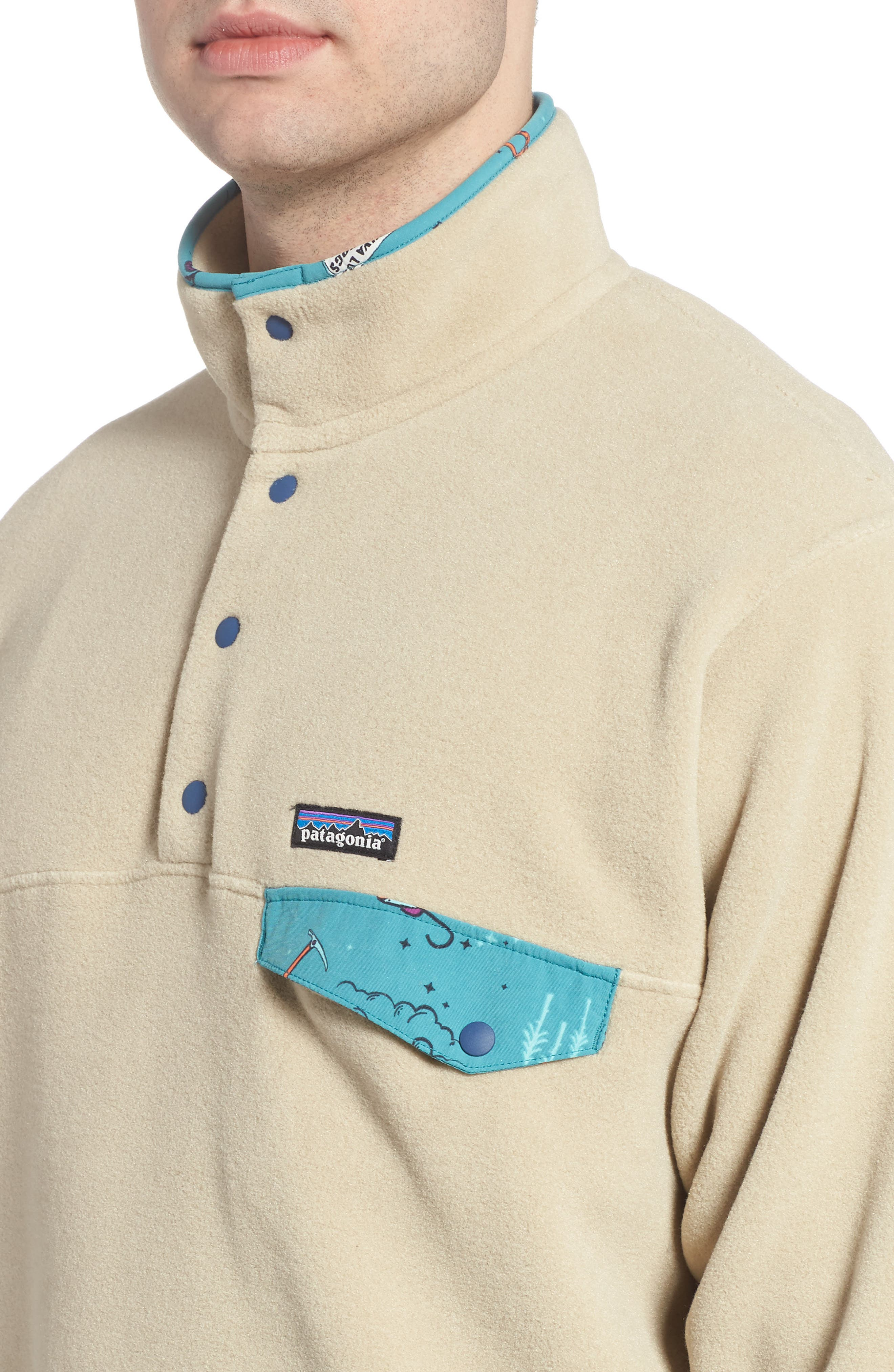 Synchilla<sup>®</sup> Snap-T<sup>®</sup> Fleece Pullover,                             Alternate thumbnail 4, color,                             255