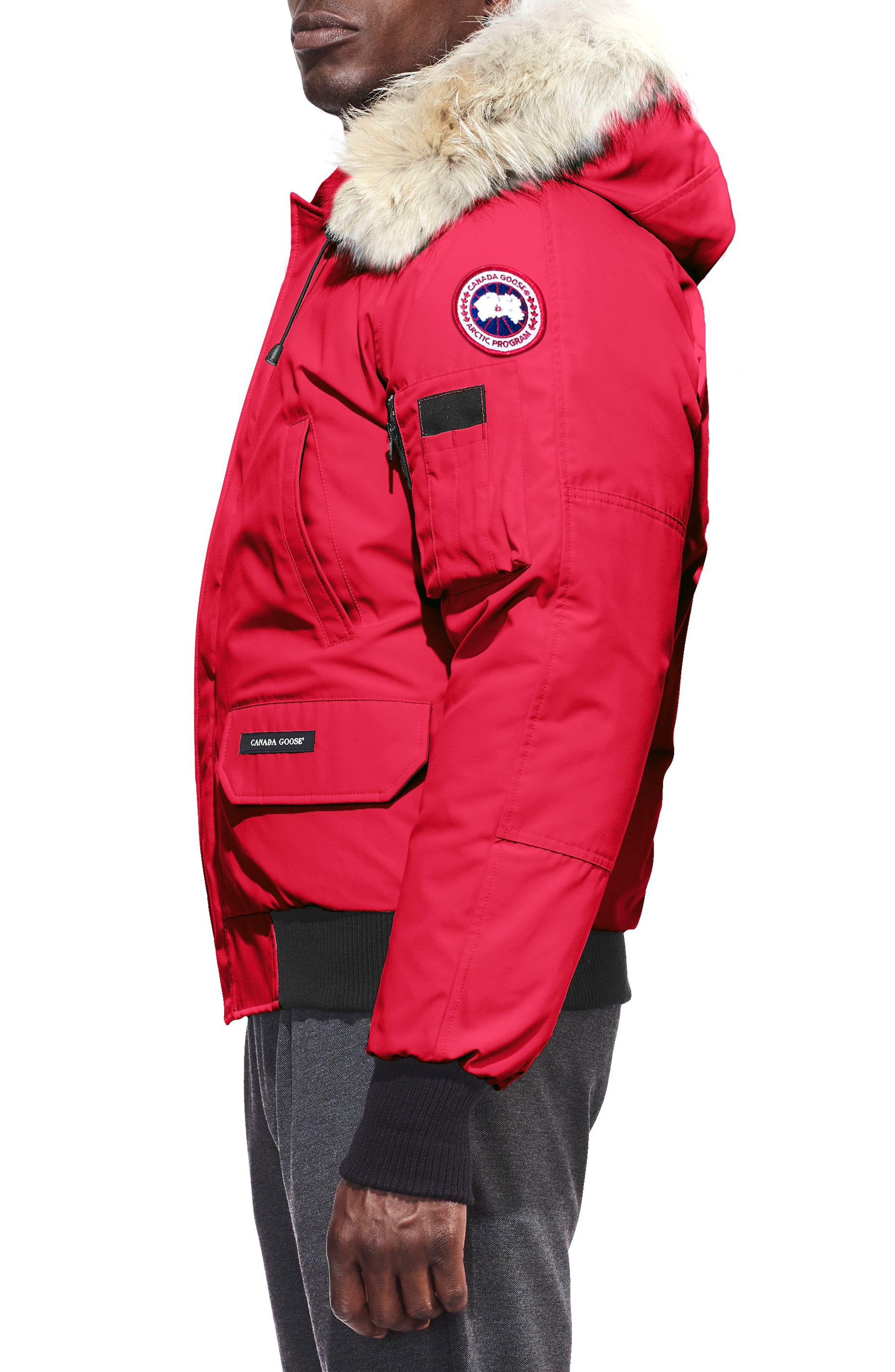 PBI Chilliwack Regular Fit Down Bomber Jacket with Genuine Coyote Trim,                             Alternate thumbnail 3, color,                             RED