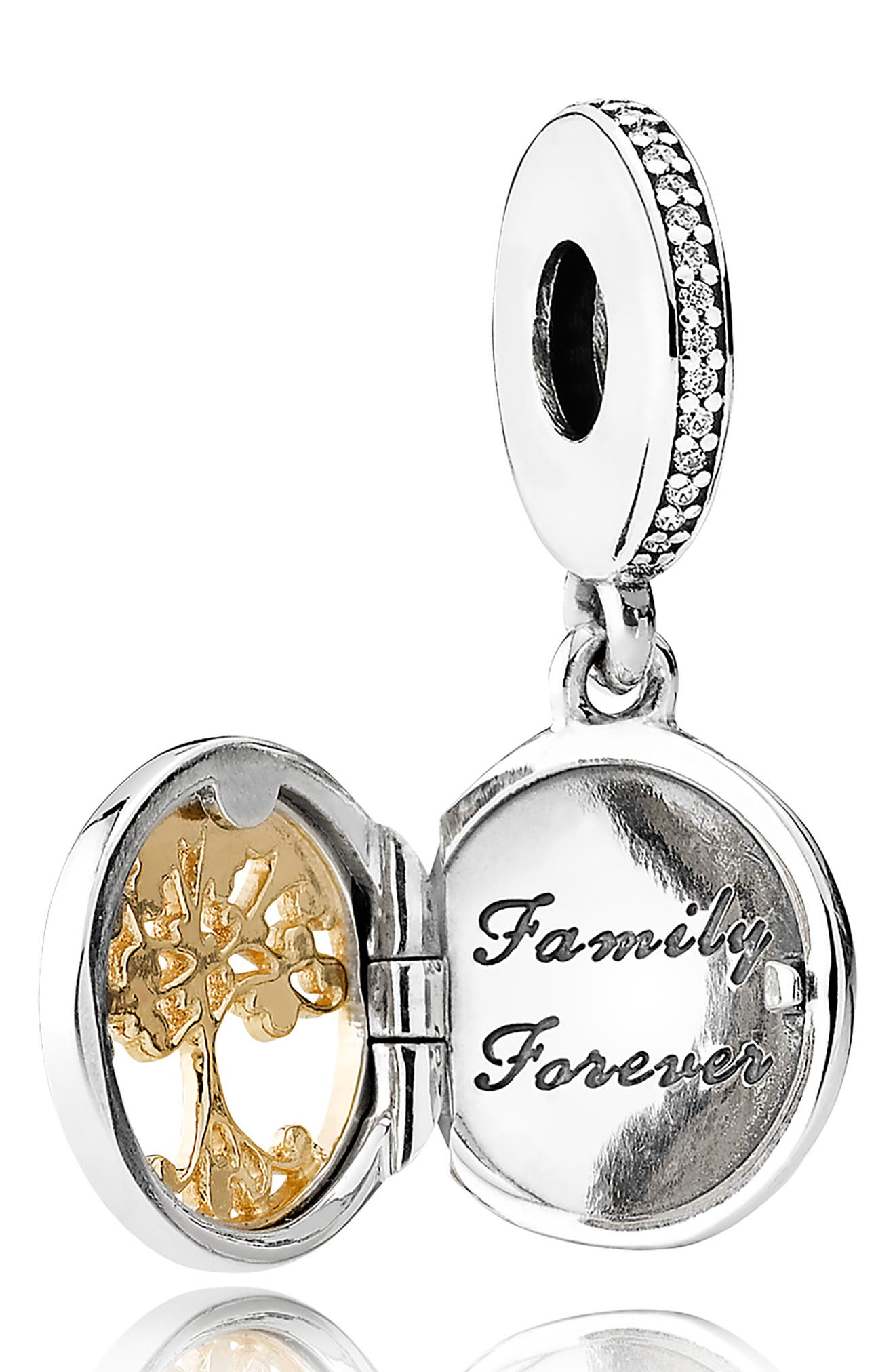 Family Roots Locket Dangle Charm,                             Alternate thumbnail 2, color,                             SILVER