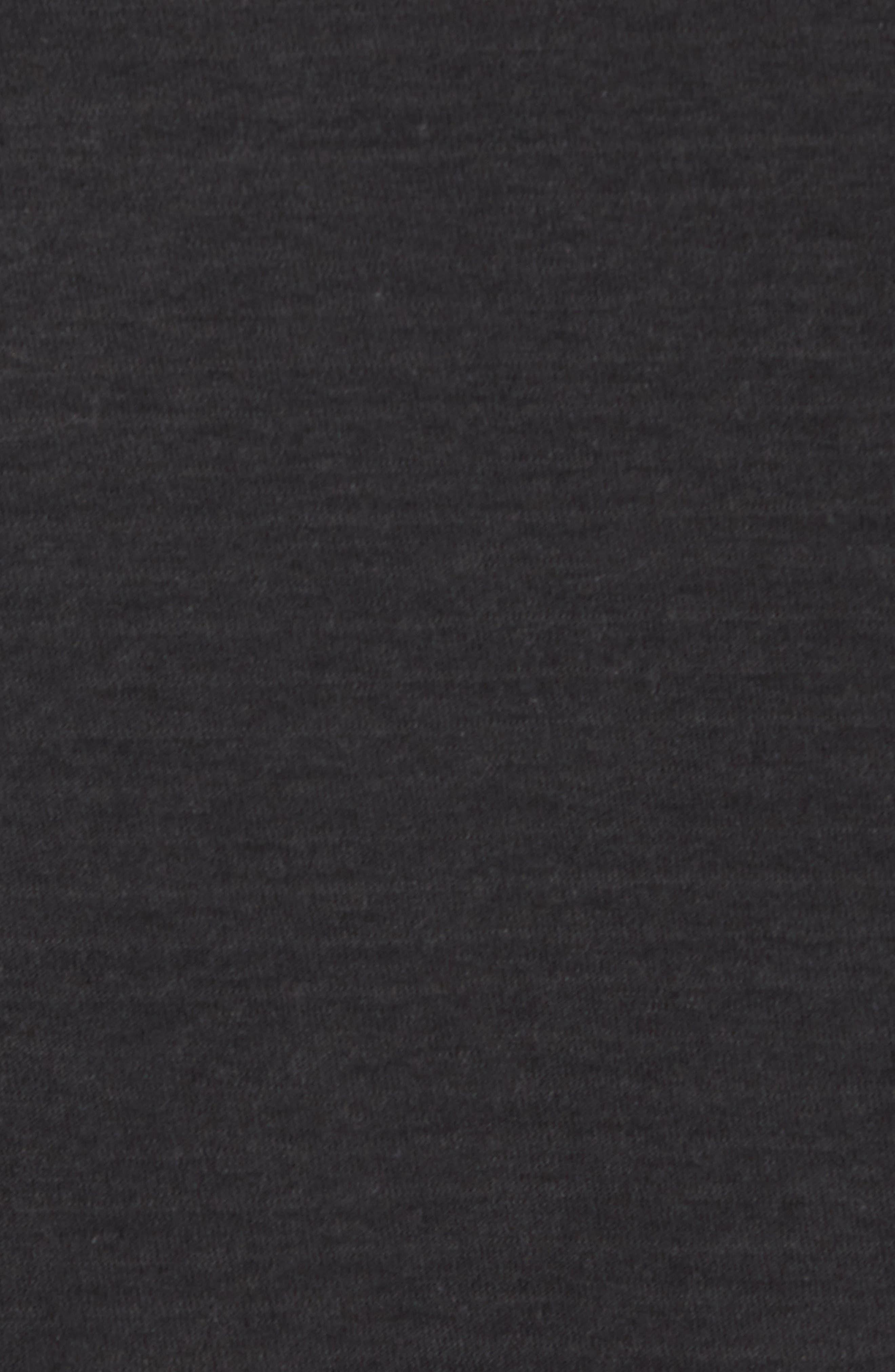 Microstripe Long Sleeve Raglan T-Shirt,                             Alternate thumbnail 5, color,                             CARBON