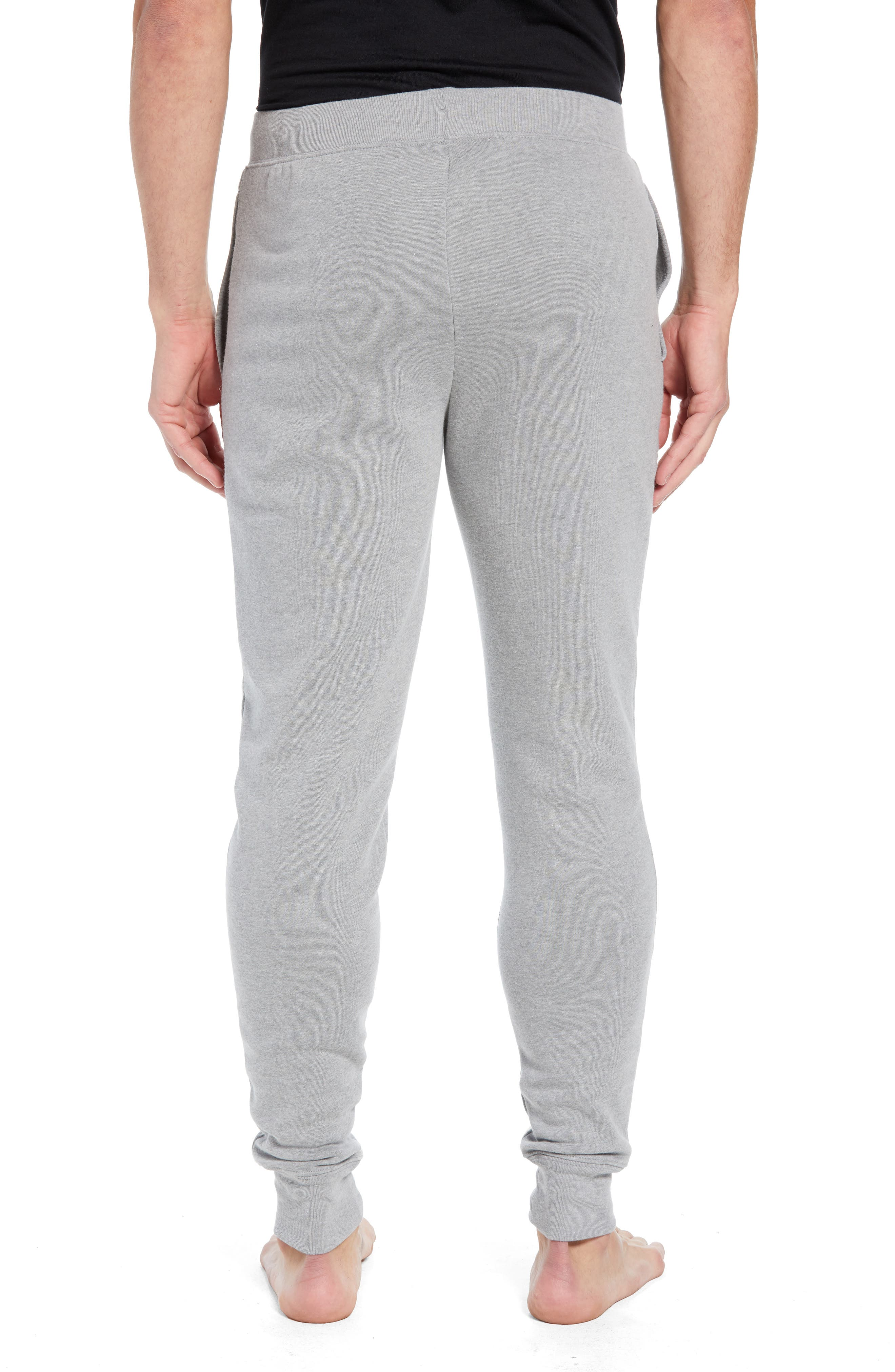 Brushed Jersey Cotton Blend Jogger Pants,                             Alternate thumbnail 2, color,                             ANDOVER HEATHER GREY
