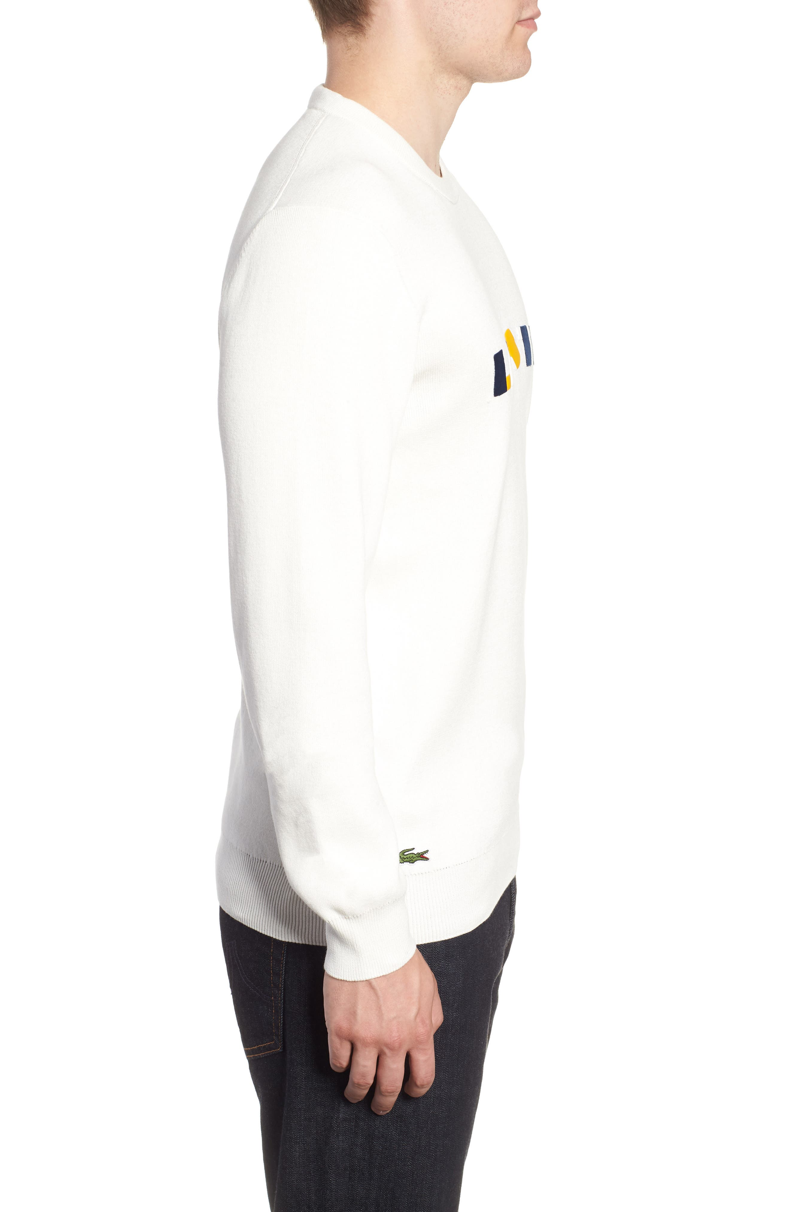 Letter Embroidered Sweater,                             Alternate thumbnail 3, color,                             110