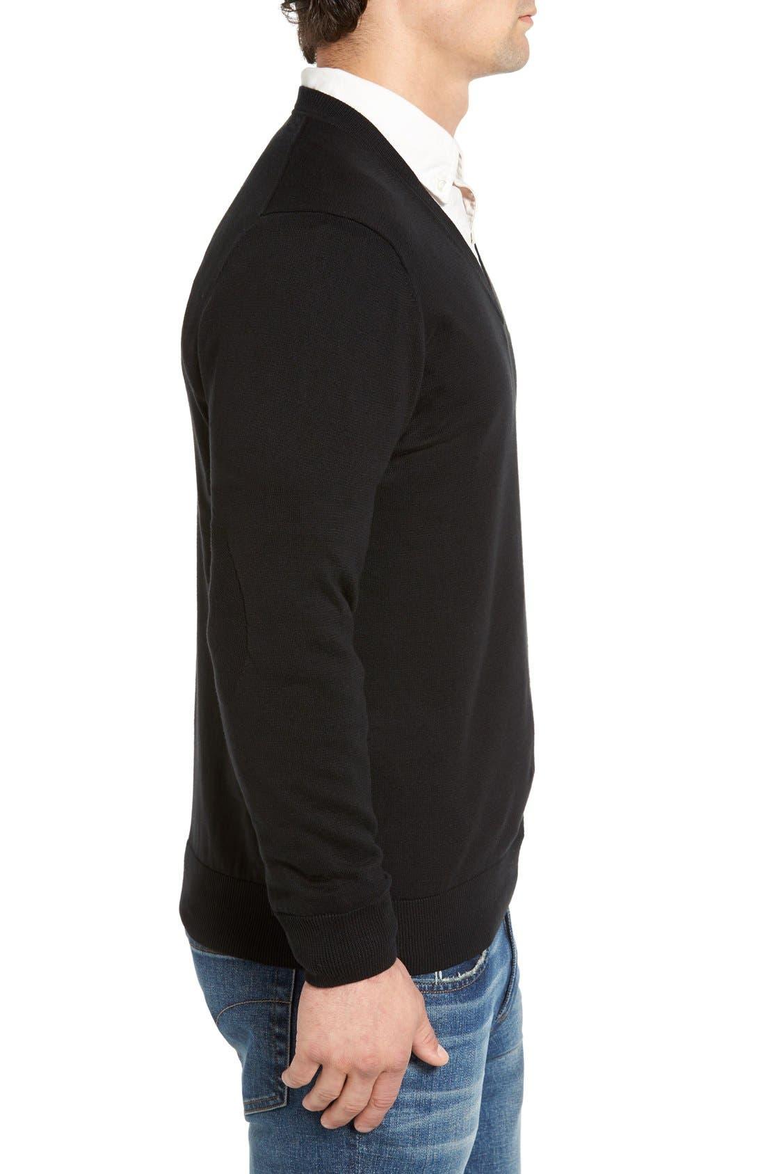 Cotton Jersey V-Neck Sweater,                             Alternate thumbnail 15, color,