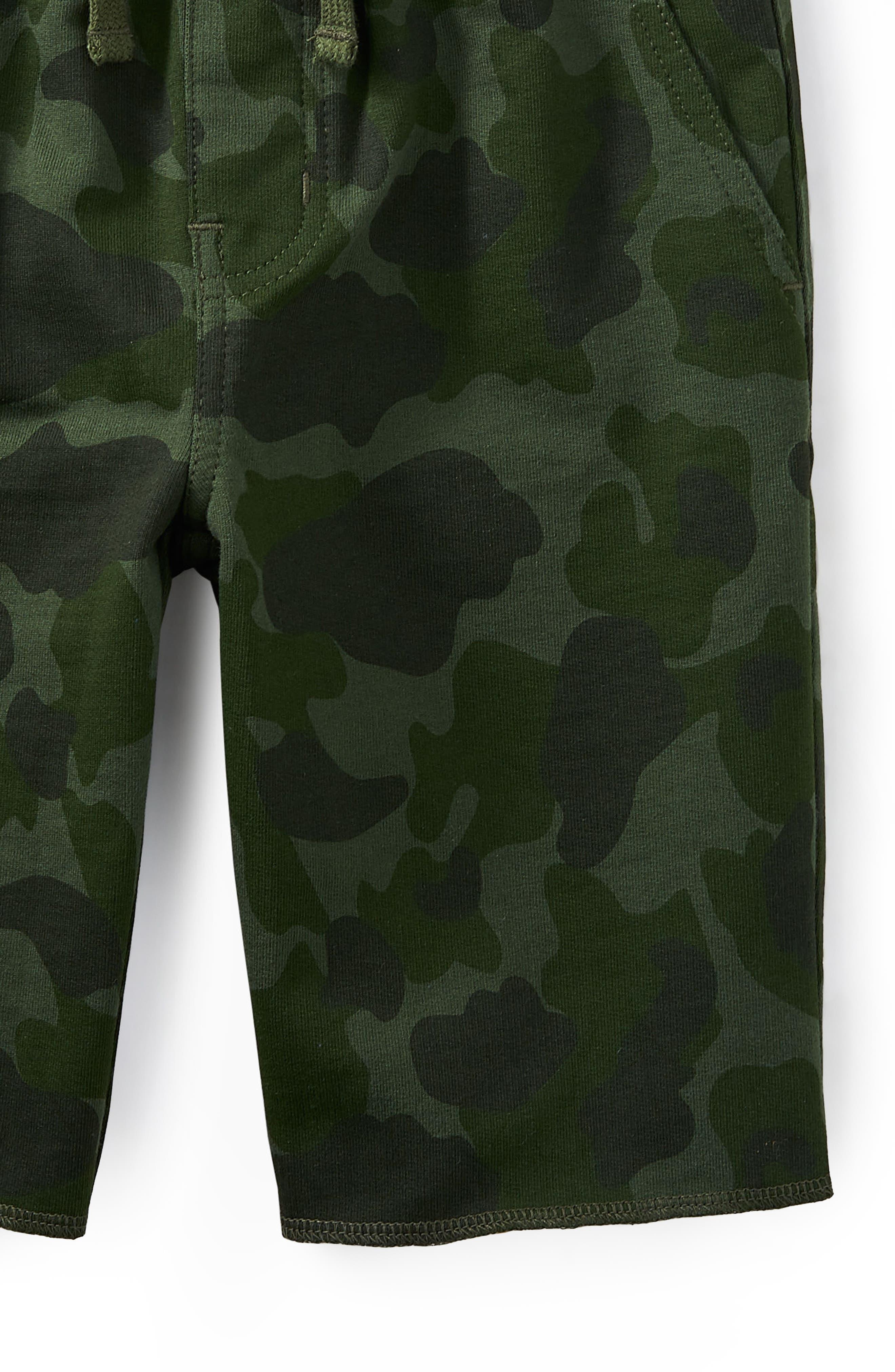 Camp Cruiser Shorts,                             Alternate thumbnail 2, color,                             300