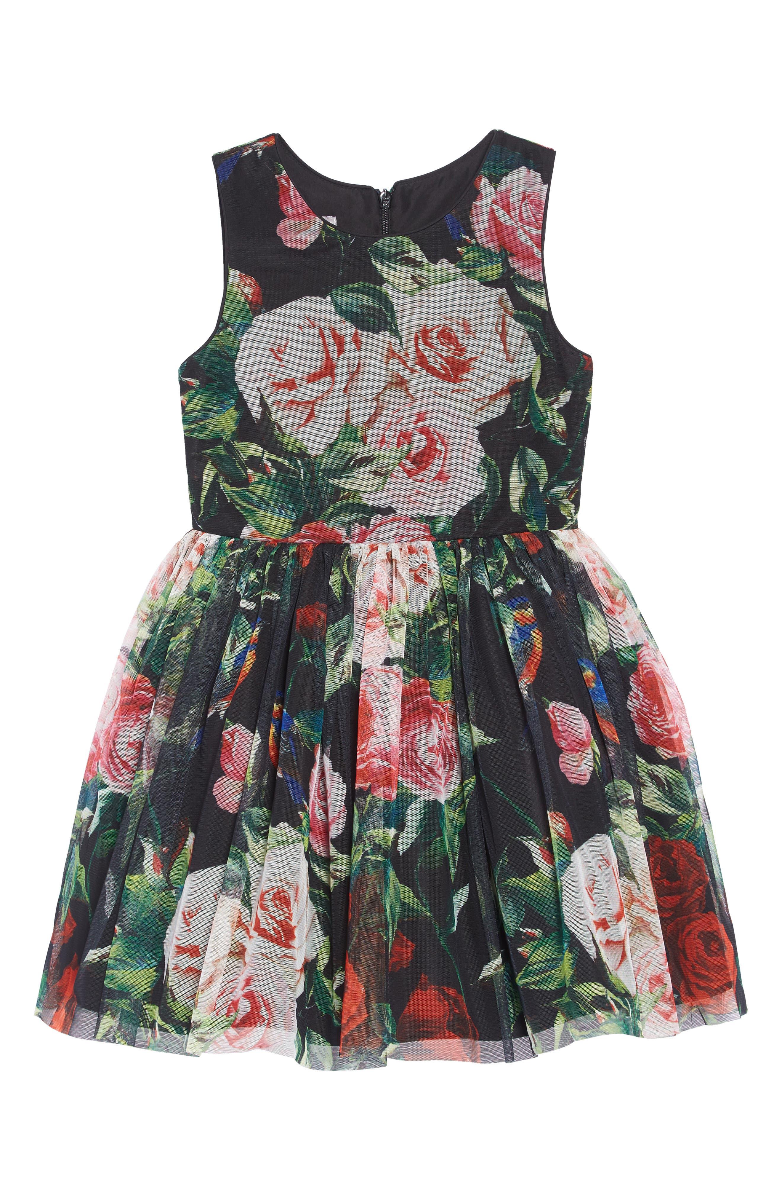 Bird & Flower Mesh Dress,                         Main,                         color, MULTI