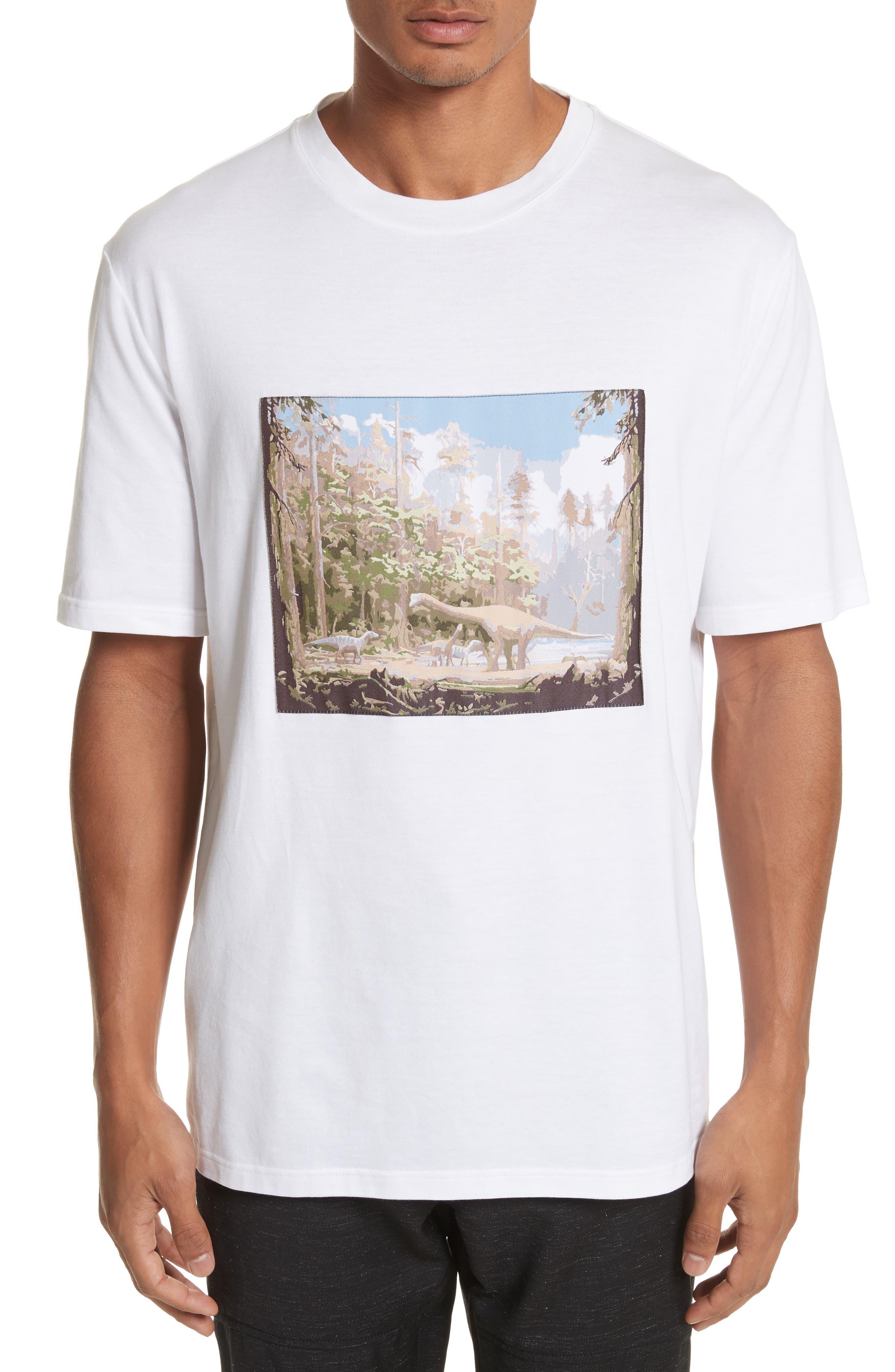 Dinosaur Patch T-Shirt,                             Main thumbnail 1, color,                             100