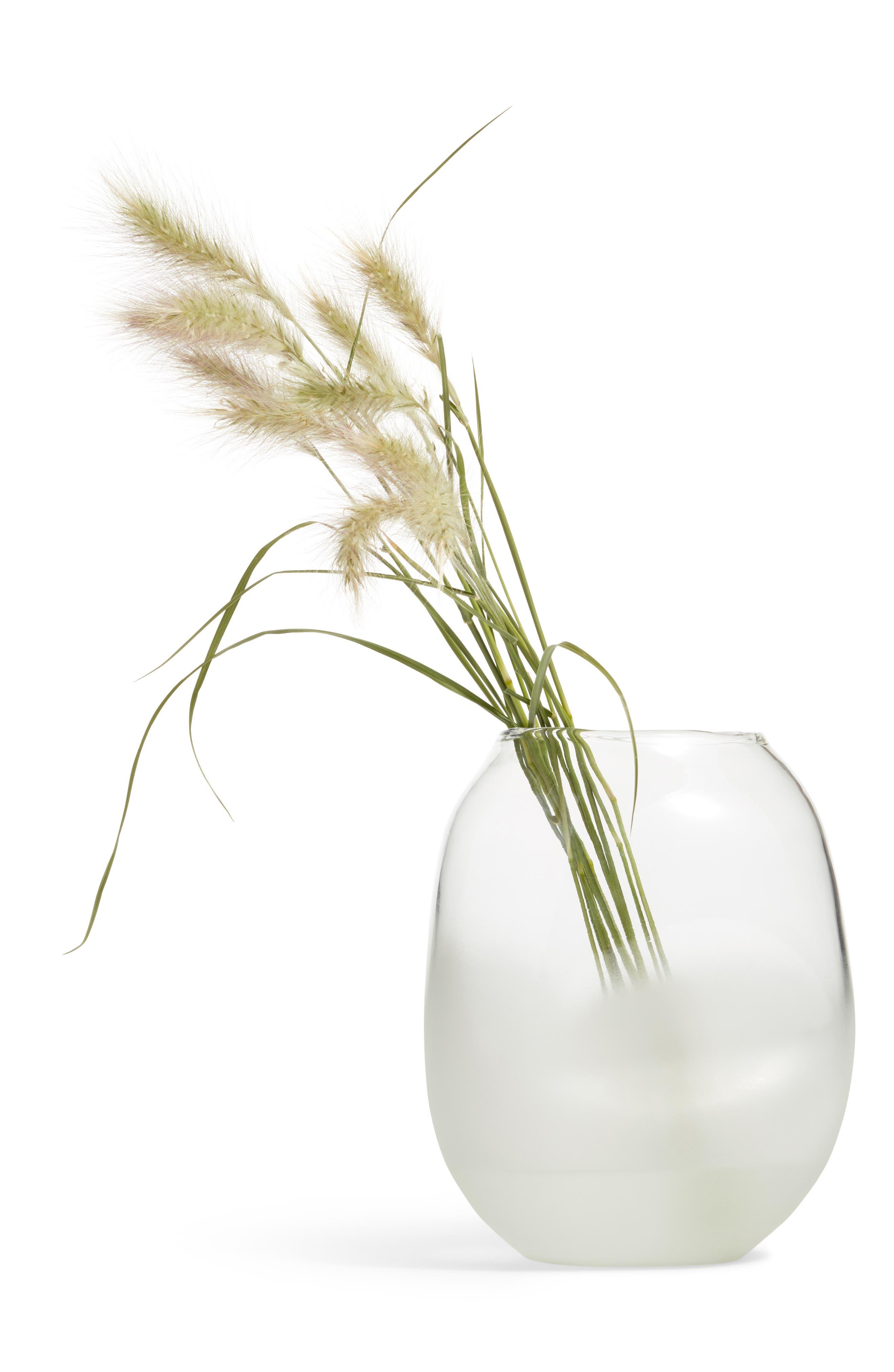 Treasure&Bond Frosted Jar Vase,                             Main thumbnail 1, color,                             CLEAR