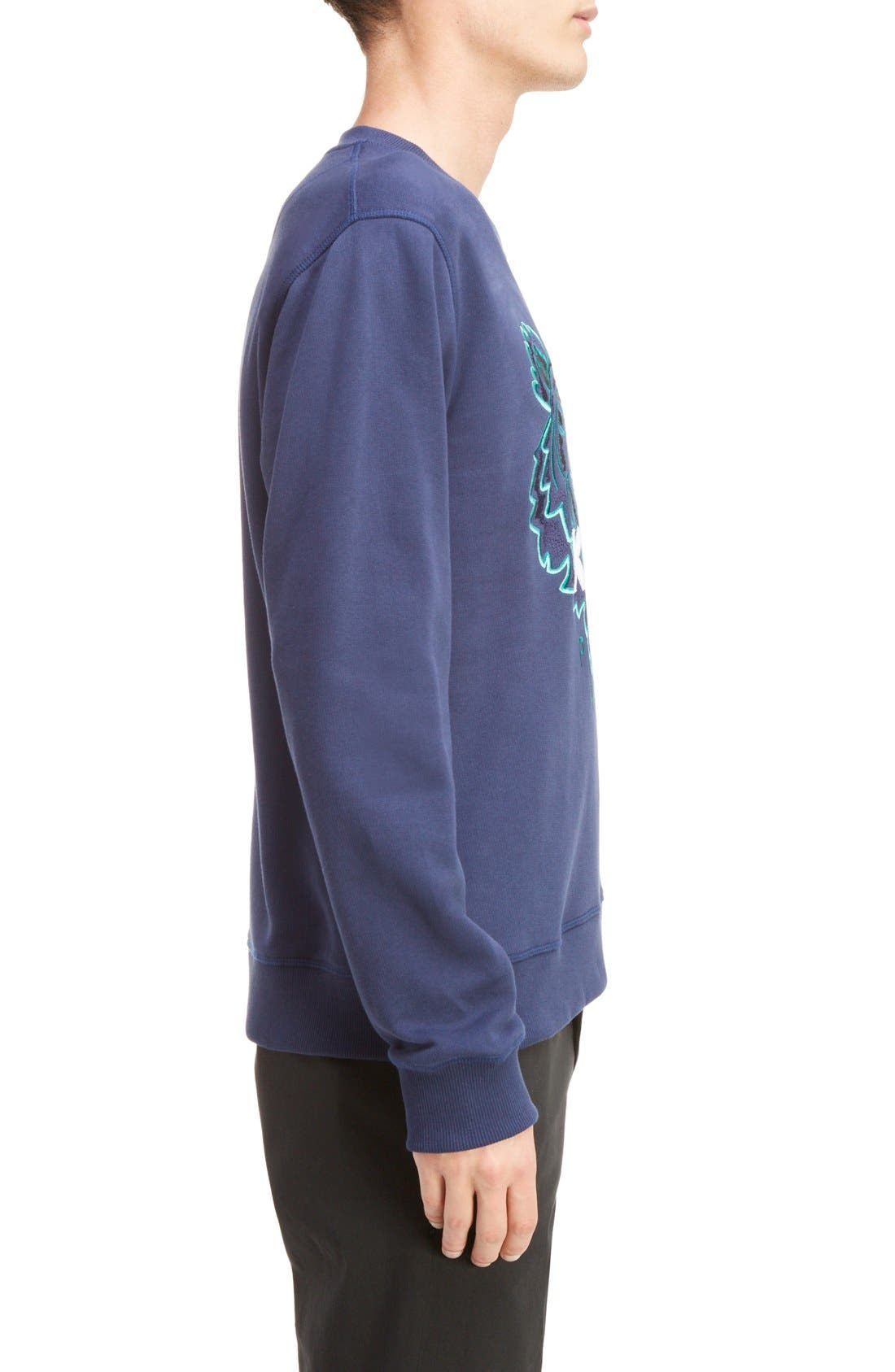 Embroidered Graphic Sweatshirt,                             Alternate thumbnail 6, color,