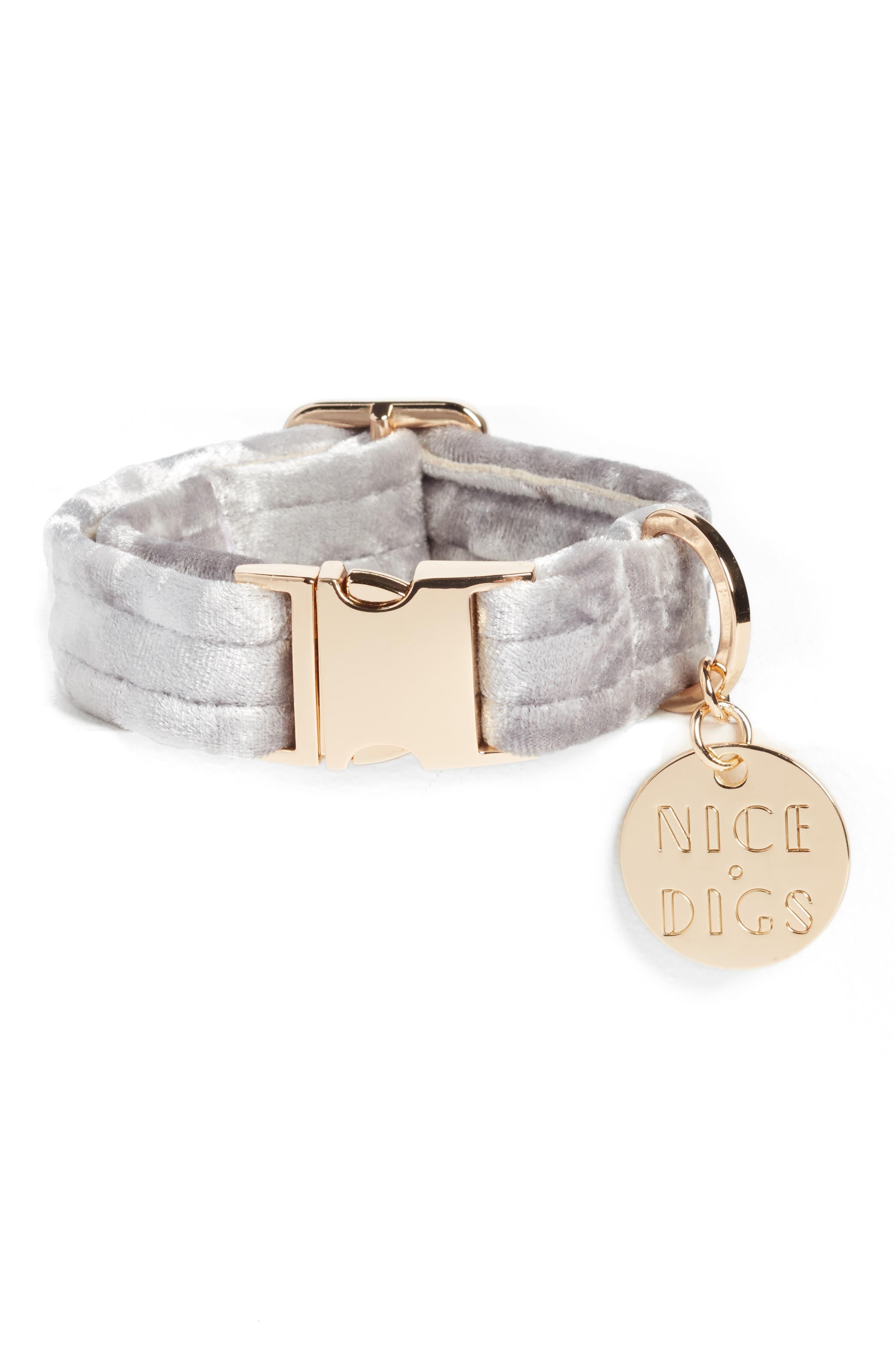 NICE DIGS Velvet Dog Collar, Main, color, 040