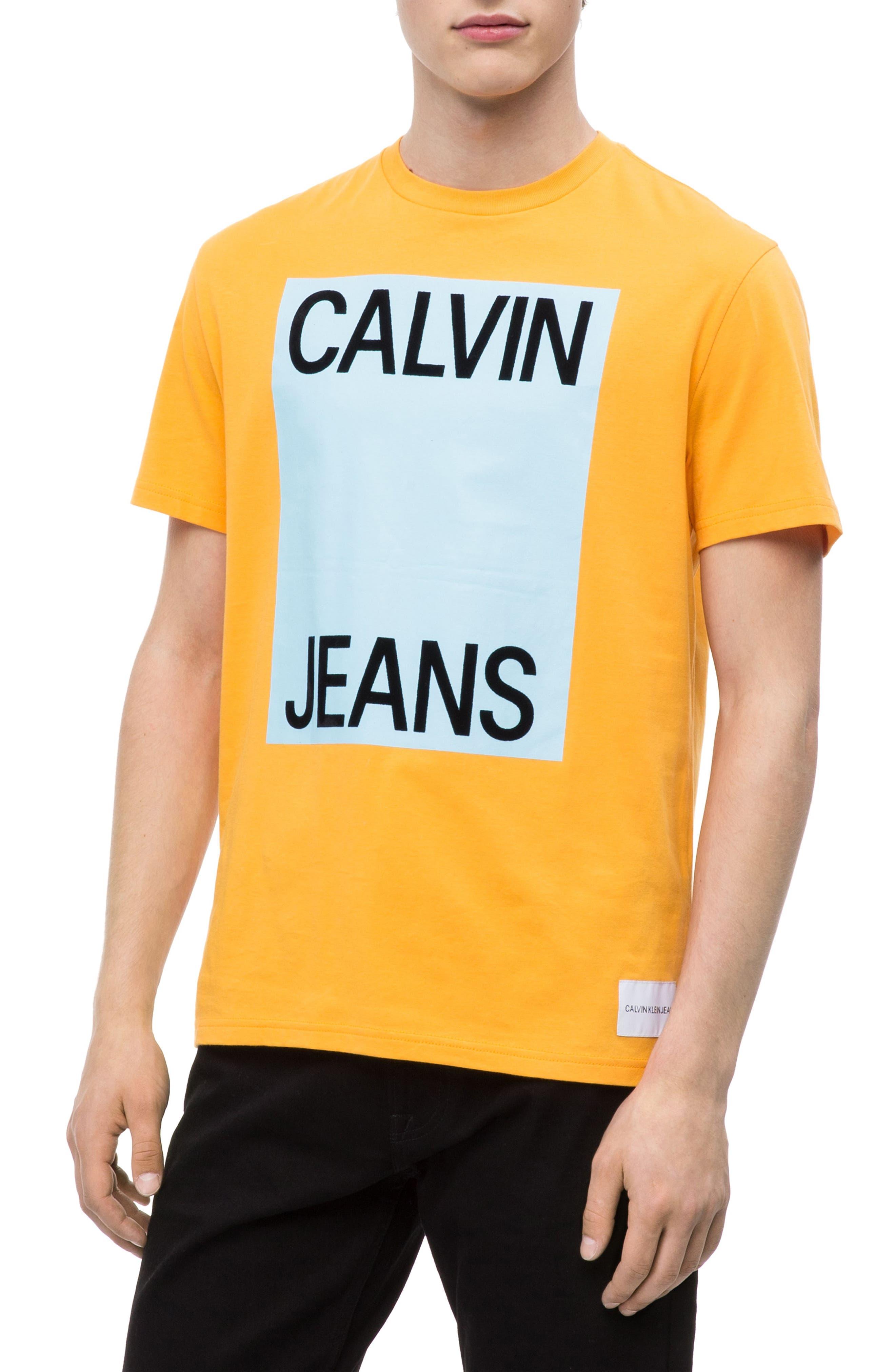 Large Logo T-Shirt,                         Main,                         color, ICELAND POPPY